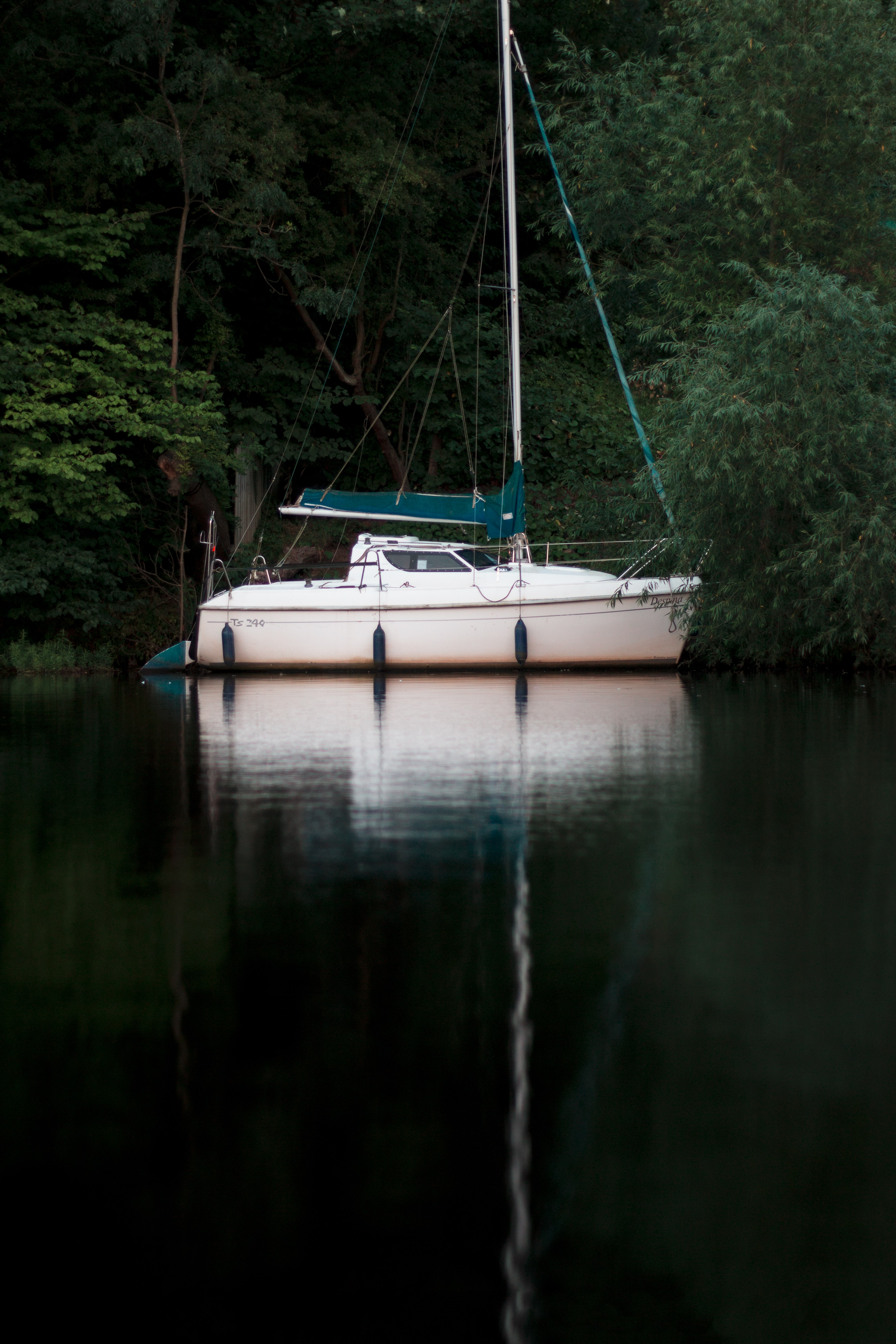A small yacht moored at the shore of a lake