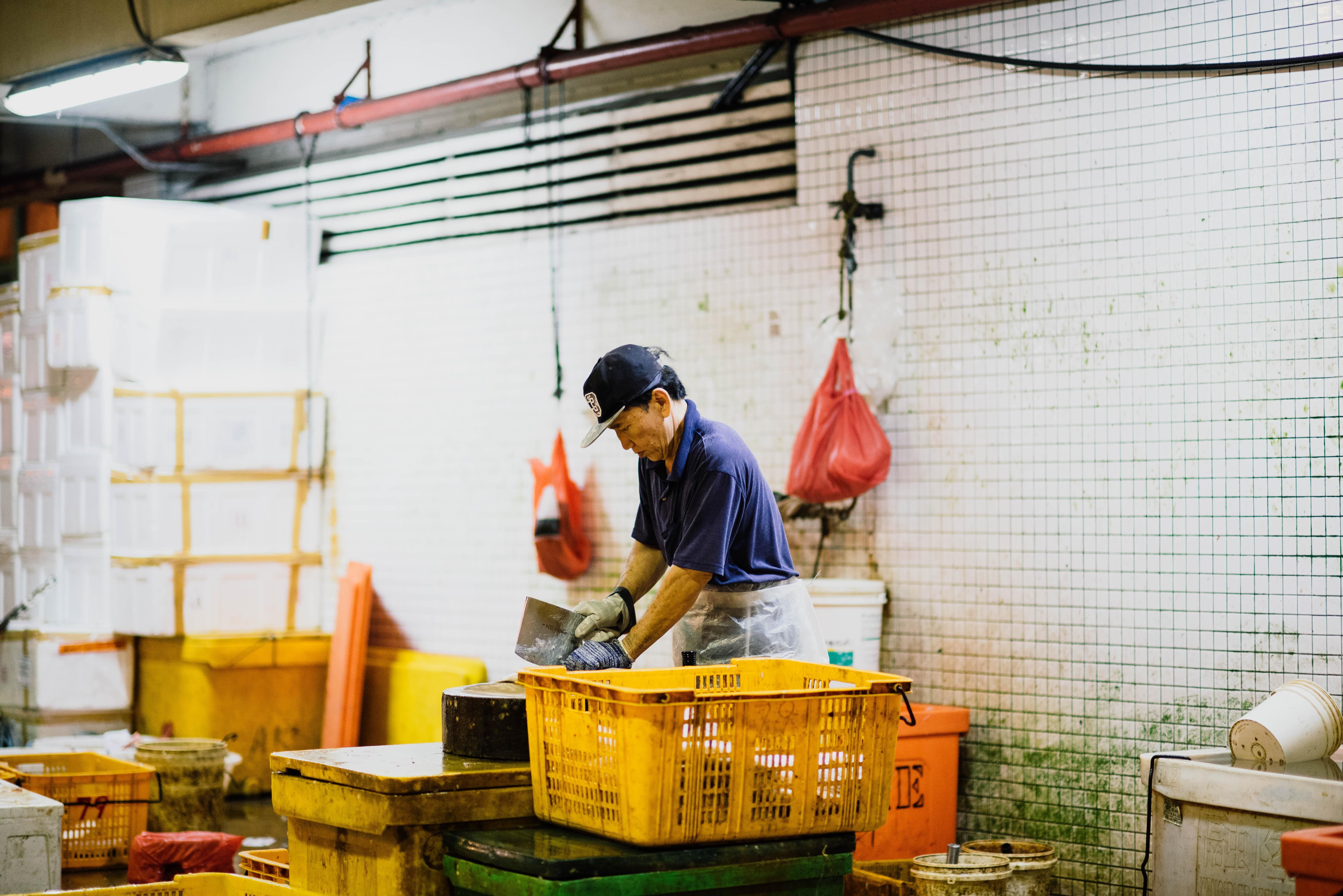A man in a baseball cap chops fish in a processing facility