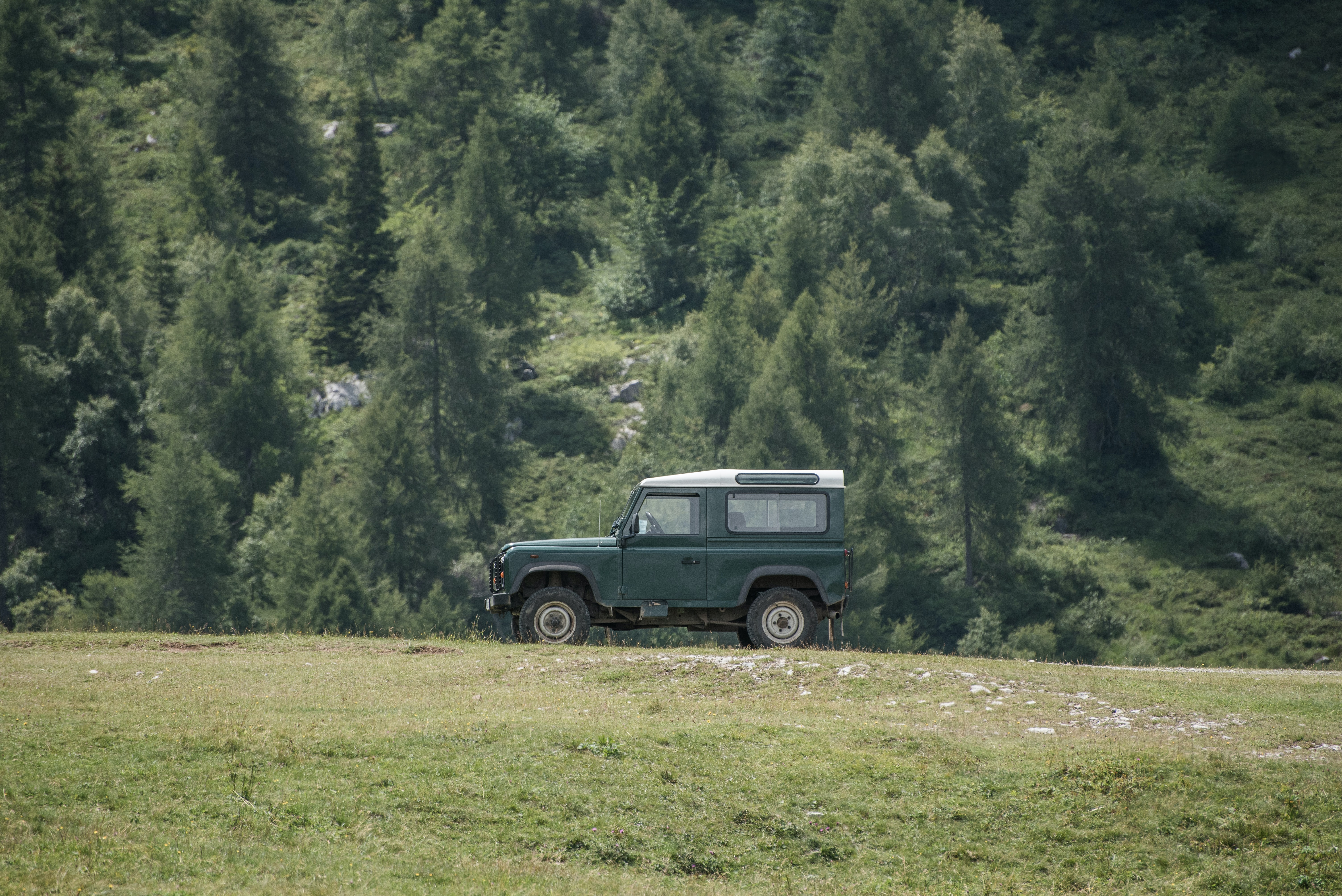 A green land rover/jeep with four-wheel drive in the forest