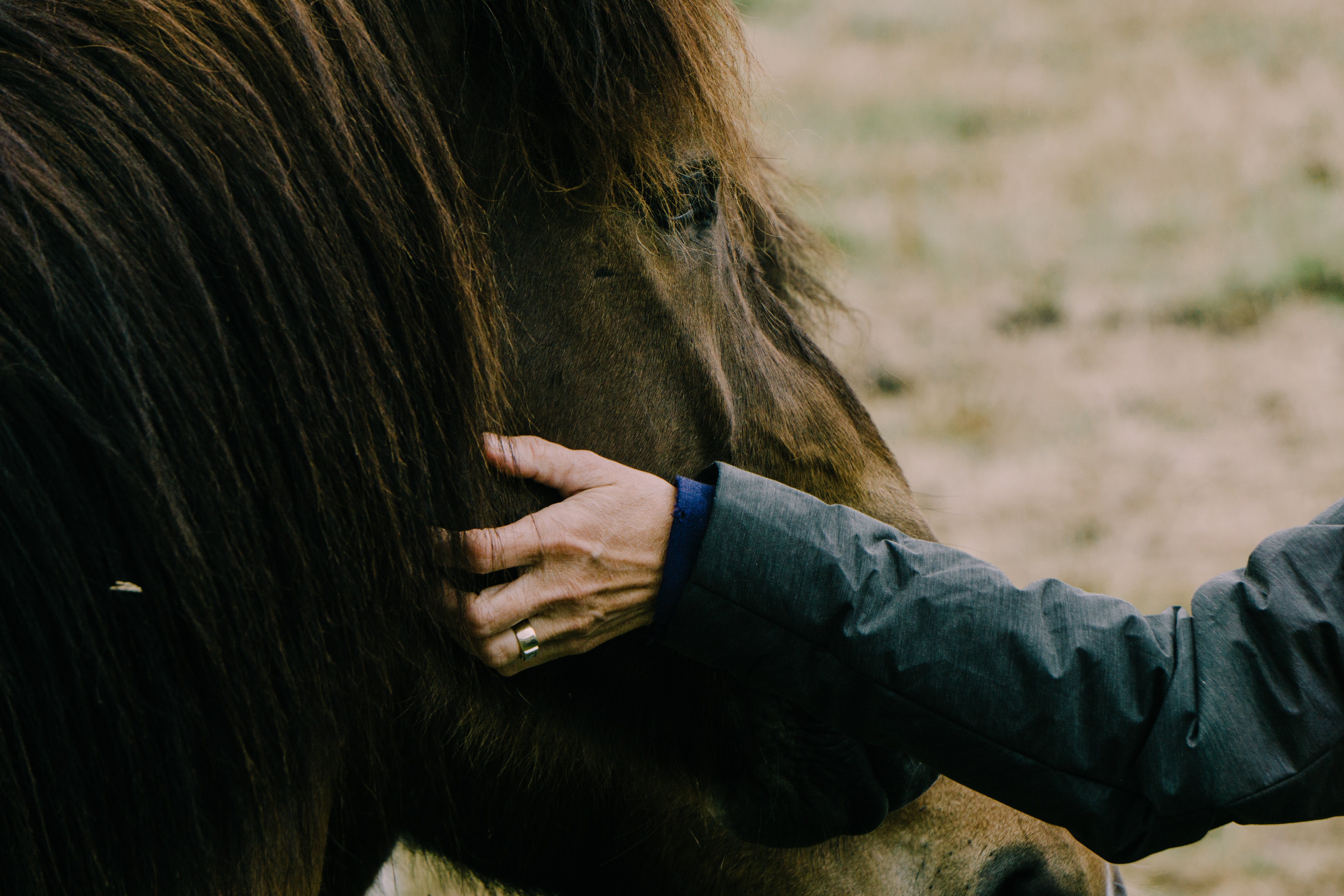 A person wearing a wedding ring pets a brown horse's mane