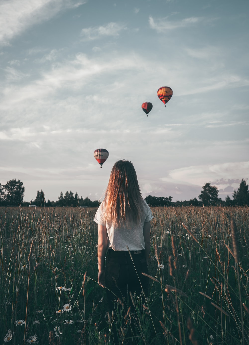 woman watching hot air balloons in flower field