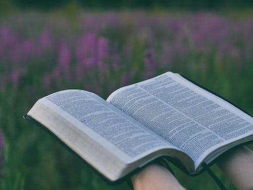 Photo of open bible, background of field of purple flowers