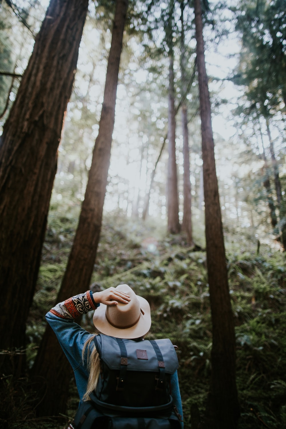 person wearing brown hat in forest