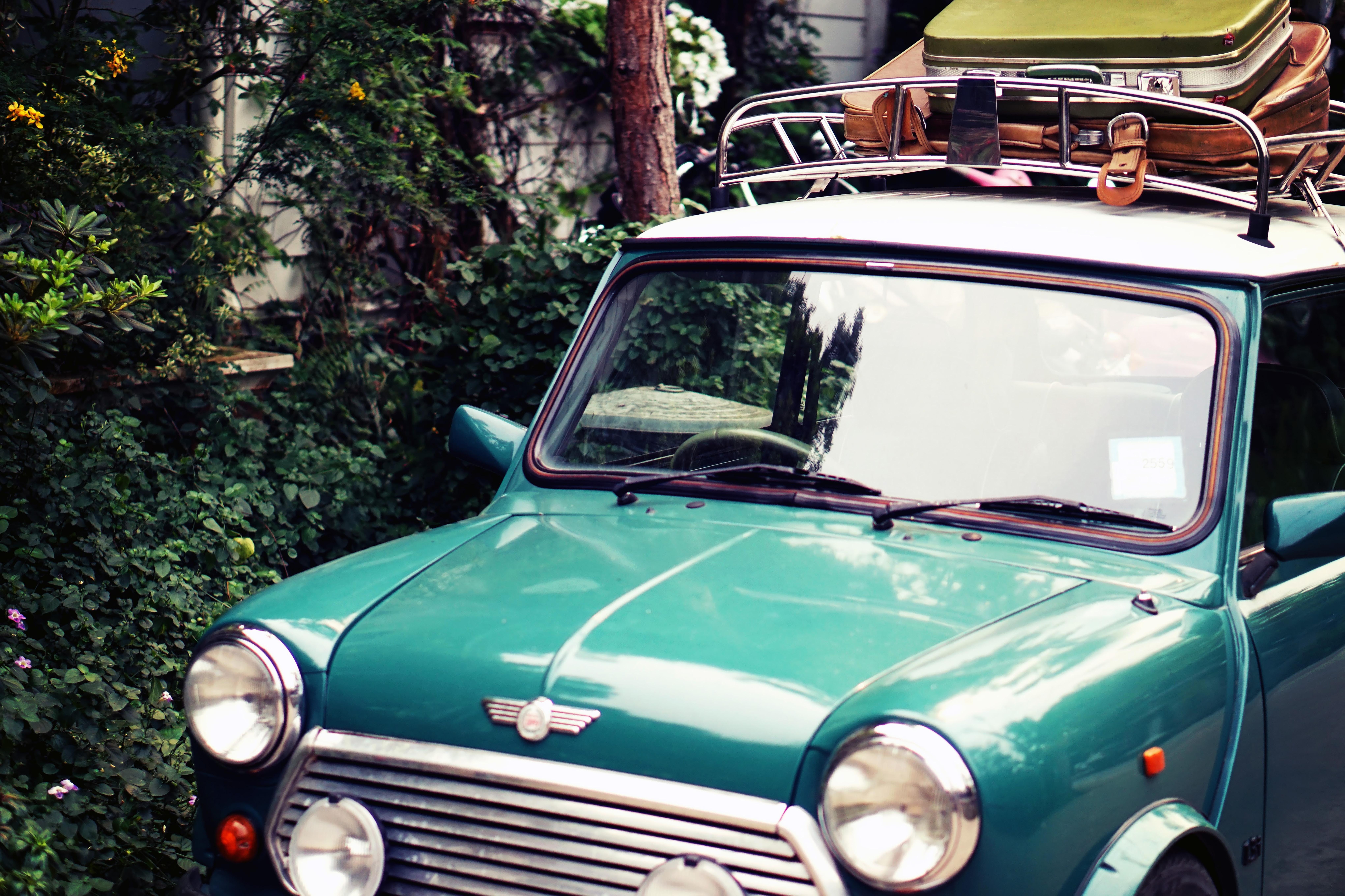 classic green Mini Morris parked near bush at daytime