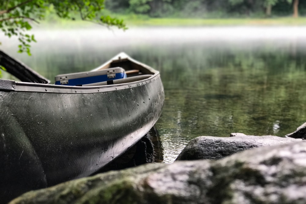 focus photo of gray and black canoe on body of water under green leaf tree