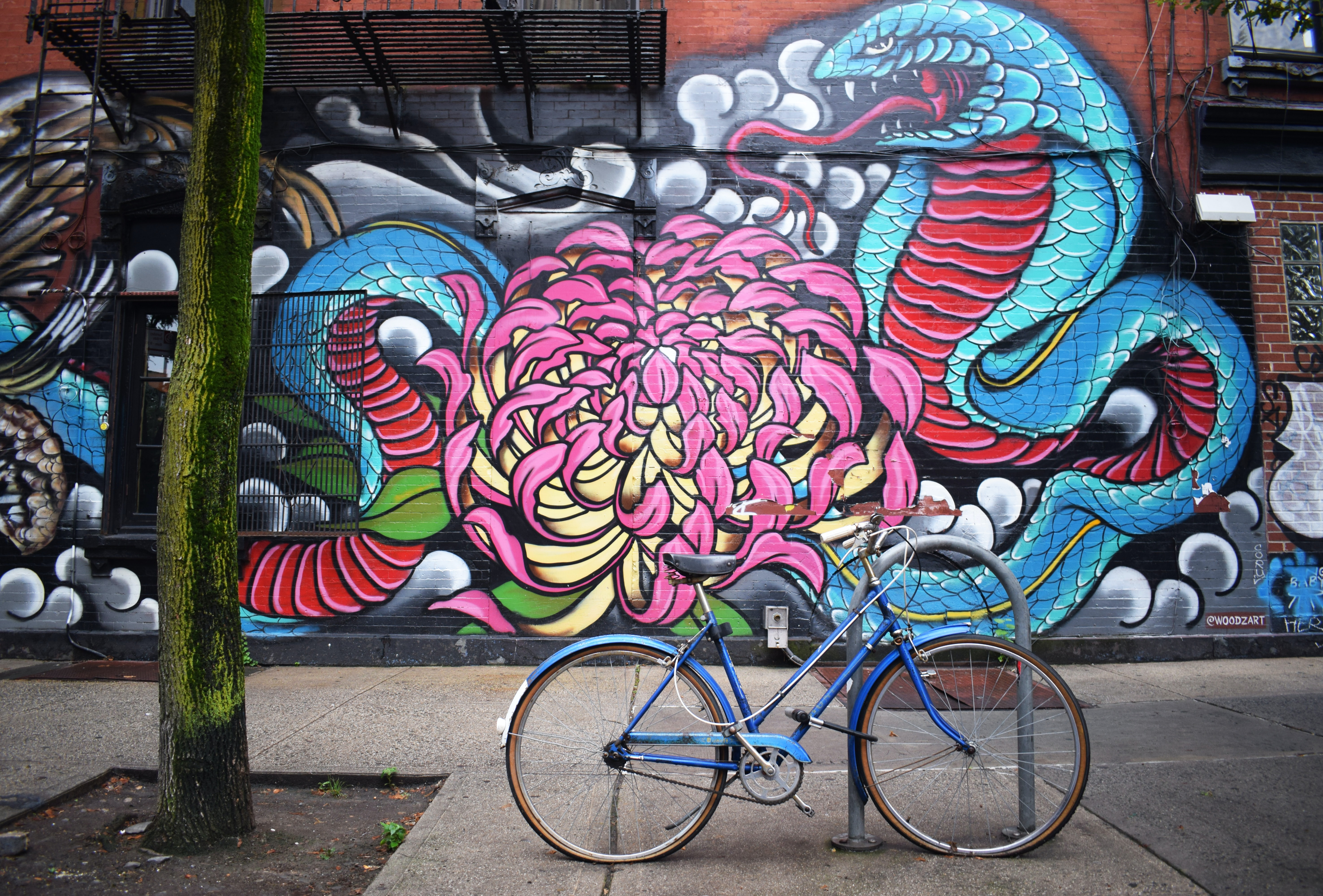 Colorful urban graffiti street art with floral snake design and blue bike with thin tree trunk