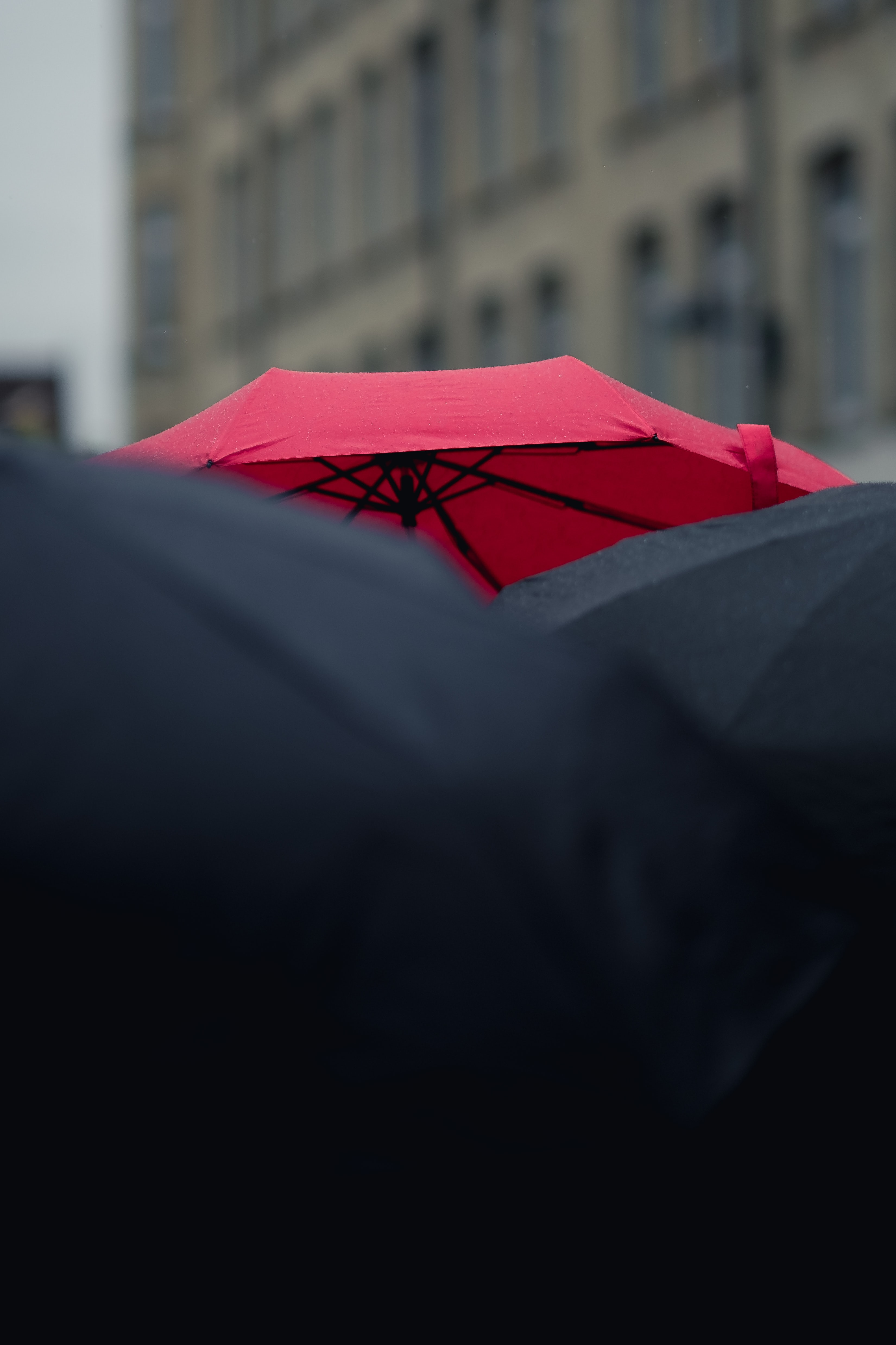 A red umbrella peeking out above a crowd of black umbrellas