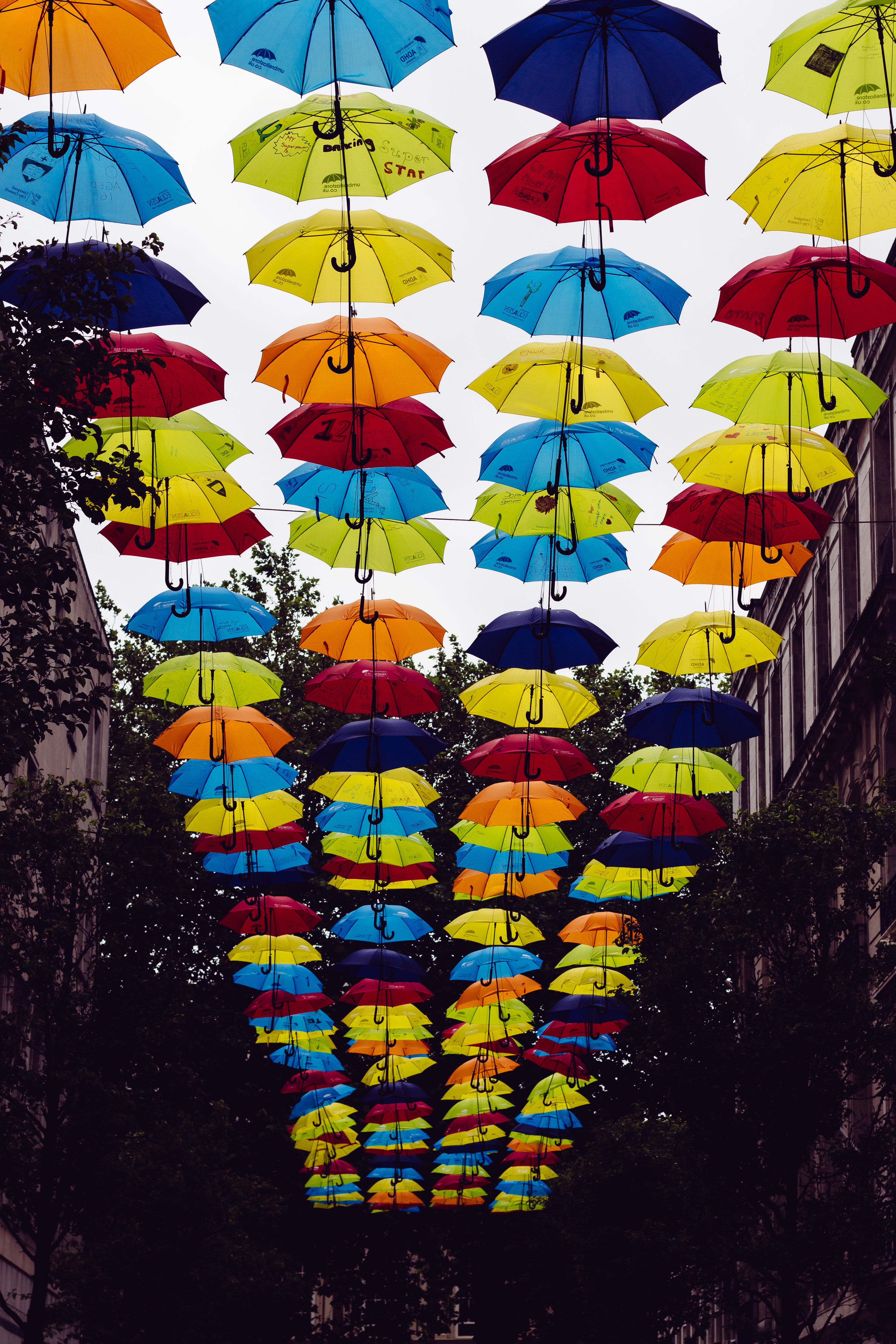 Brightly colored umbrella street art decorations between buildings and trees in Liverpool, England, United Kingdom