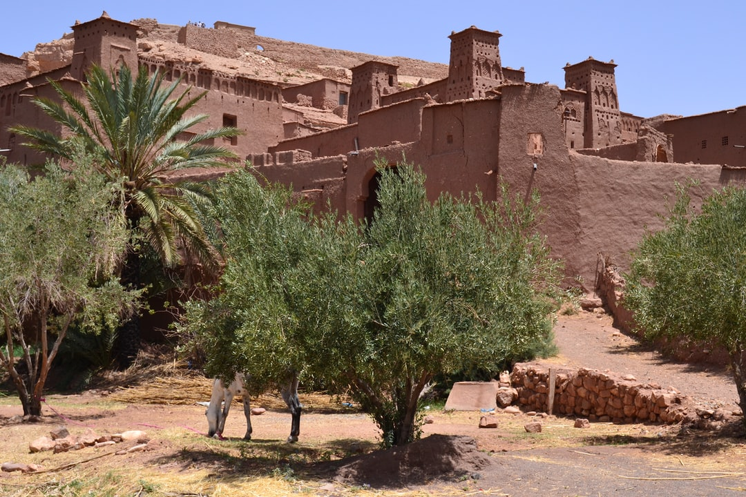 Aït Benhaddou, an ancient village along the former caravan route between the Sahara and Marrakech, it has been a UNESCO World Heritage Site since 1987. An extraordinary complex of buildings offering a complete panorama of pre-Saharan building techniques and a miniature striking typology architecture of southern Morocco.