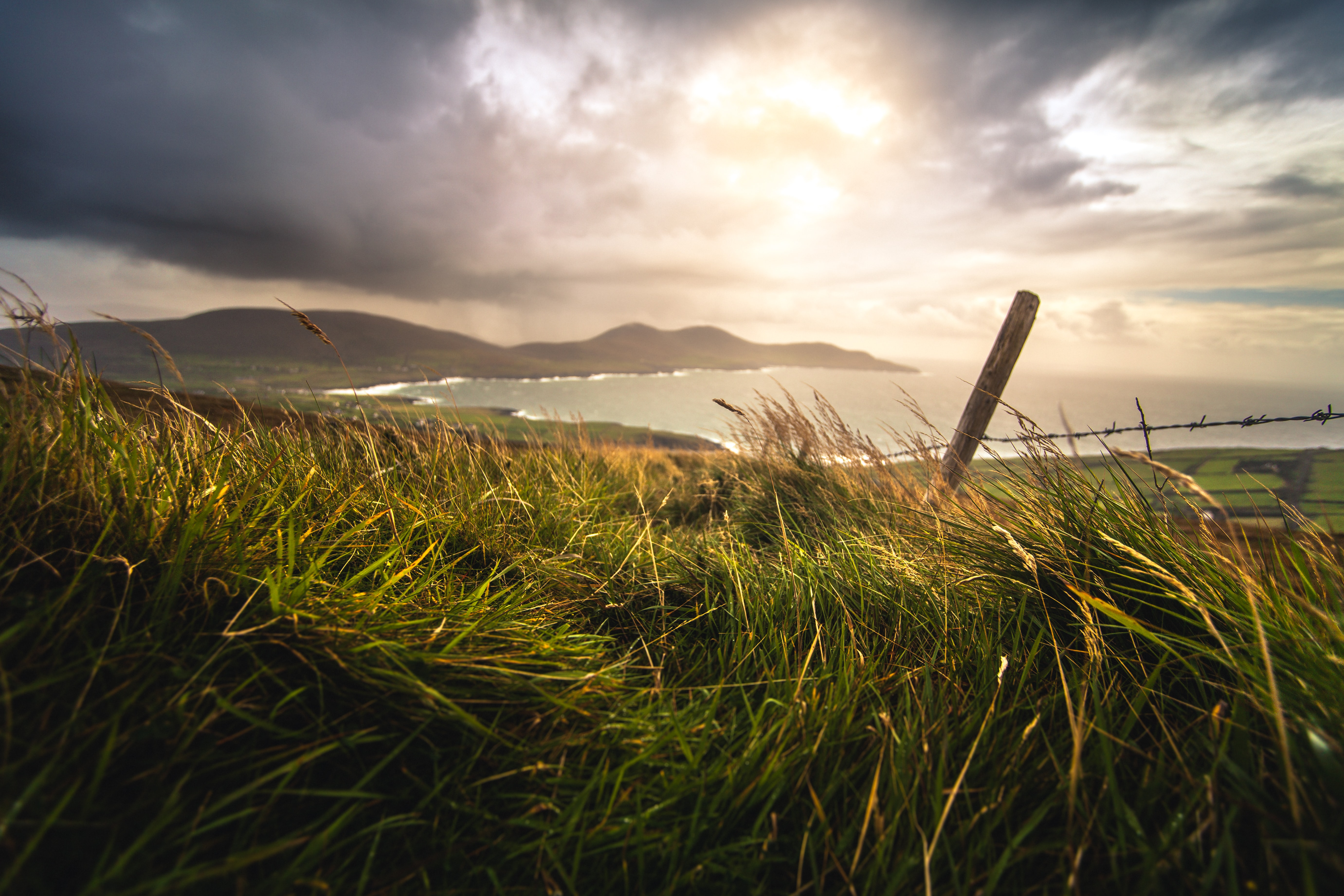 A barbed wire fence covered in green sea grass by a bay in Ireland at golden hour