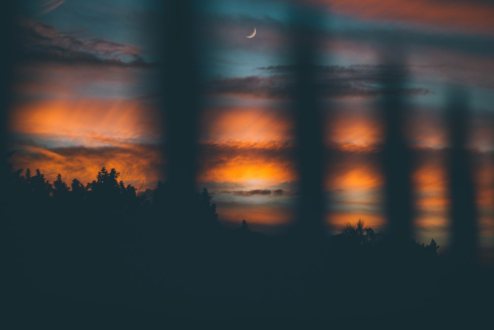 crescent moon above forest during nightime