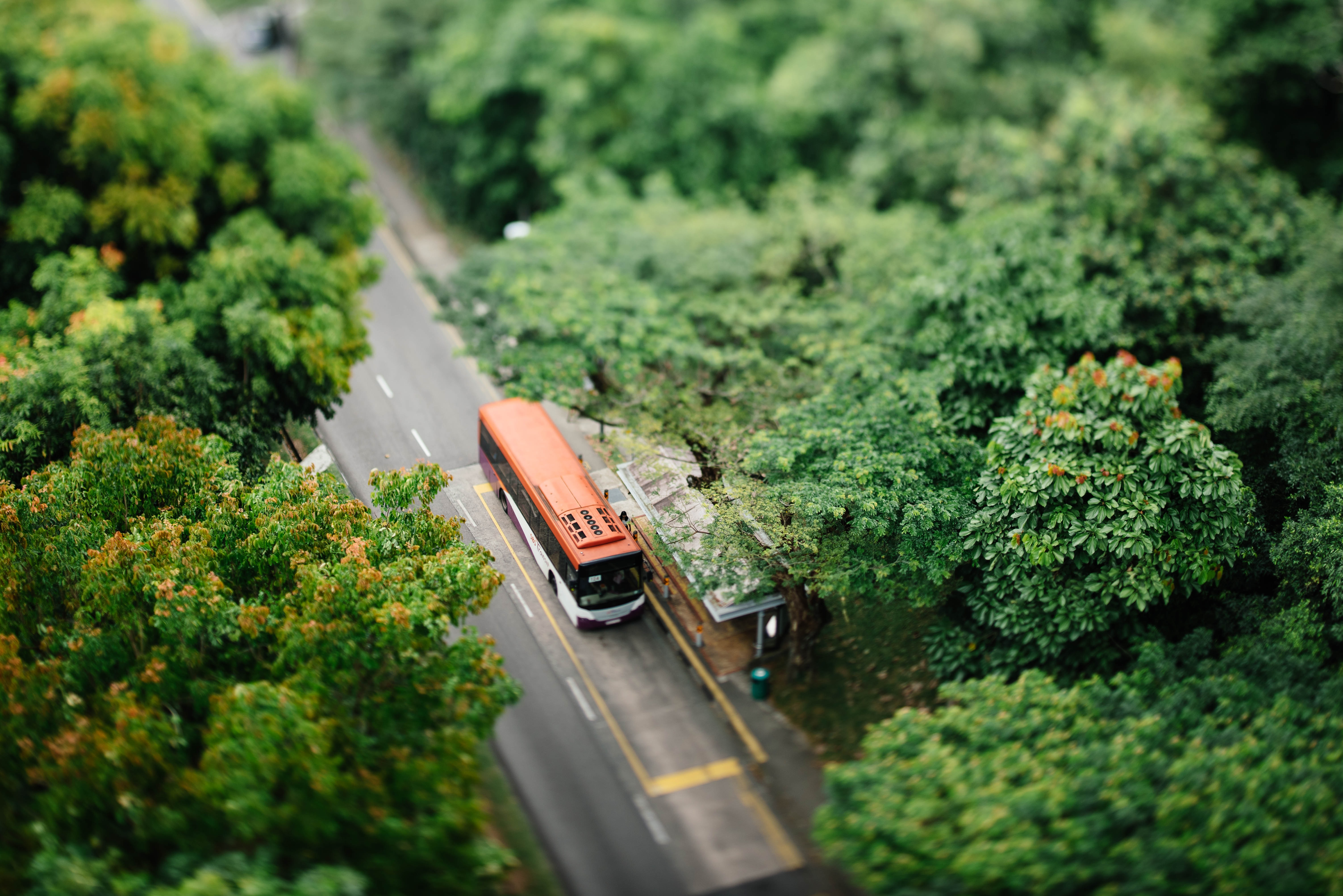 A drone shot of a bus at a stop on a tree-lined road