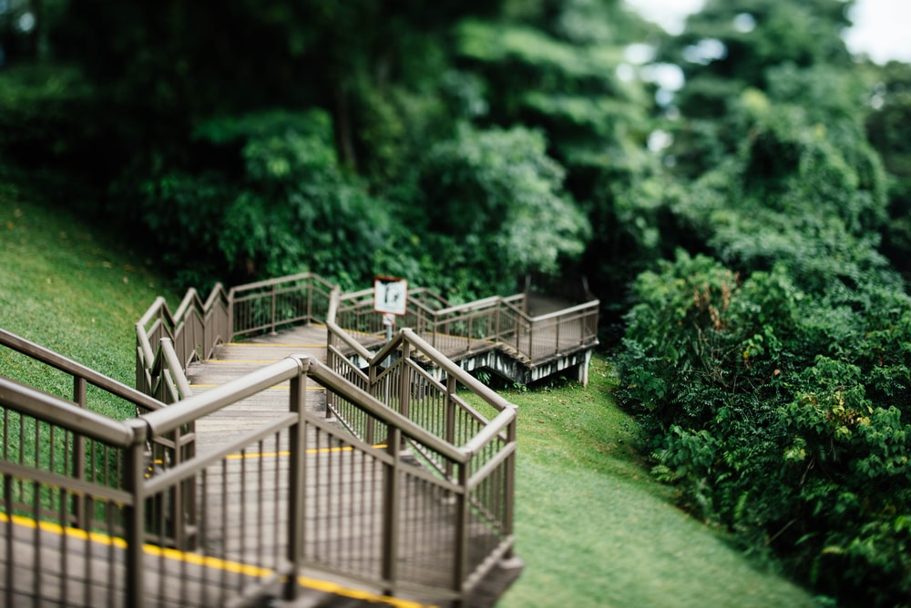 brown wooden staircase selective focal photo