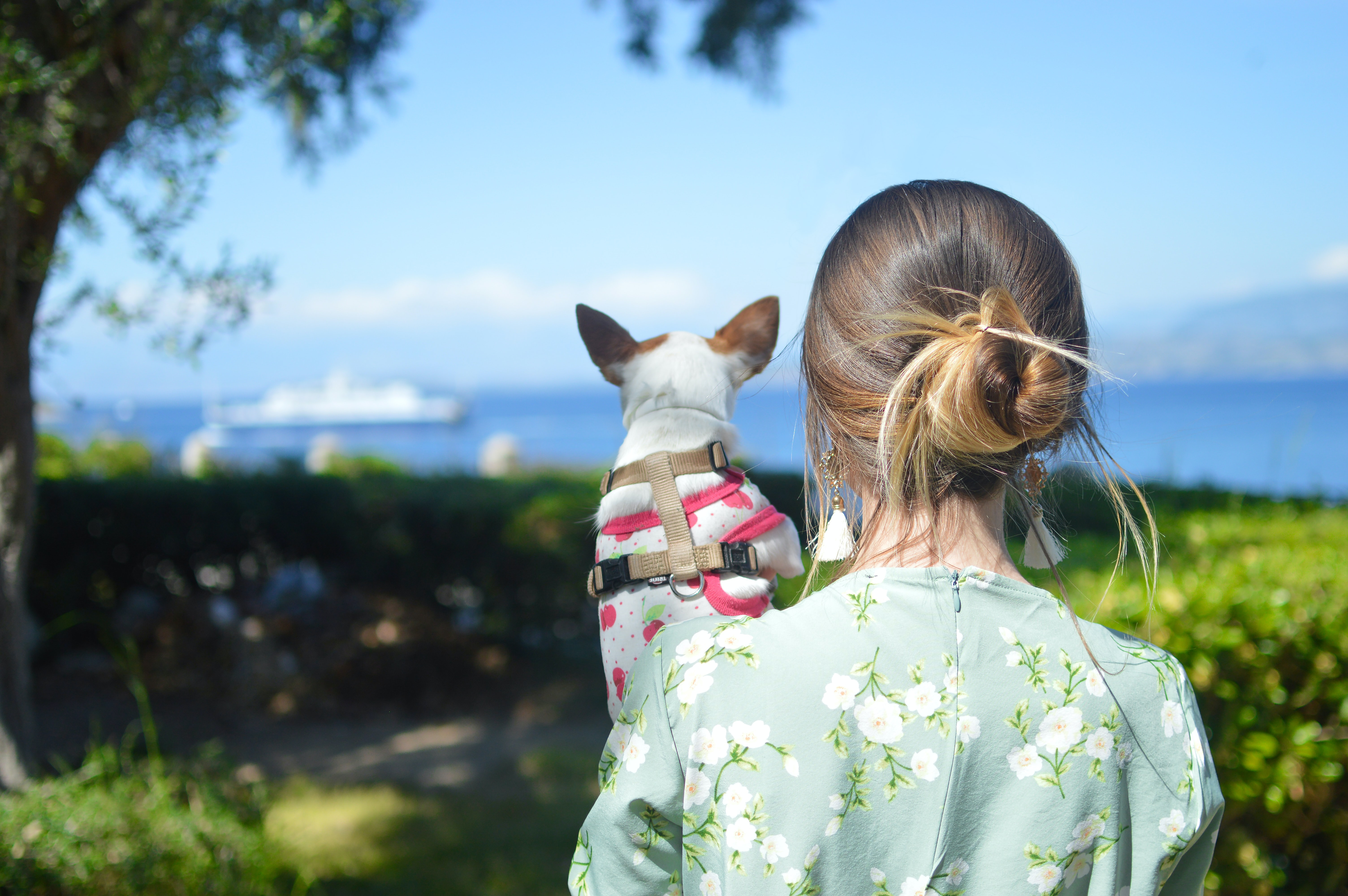 girl carrying dog outdoor during daytime