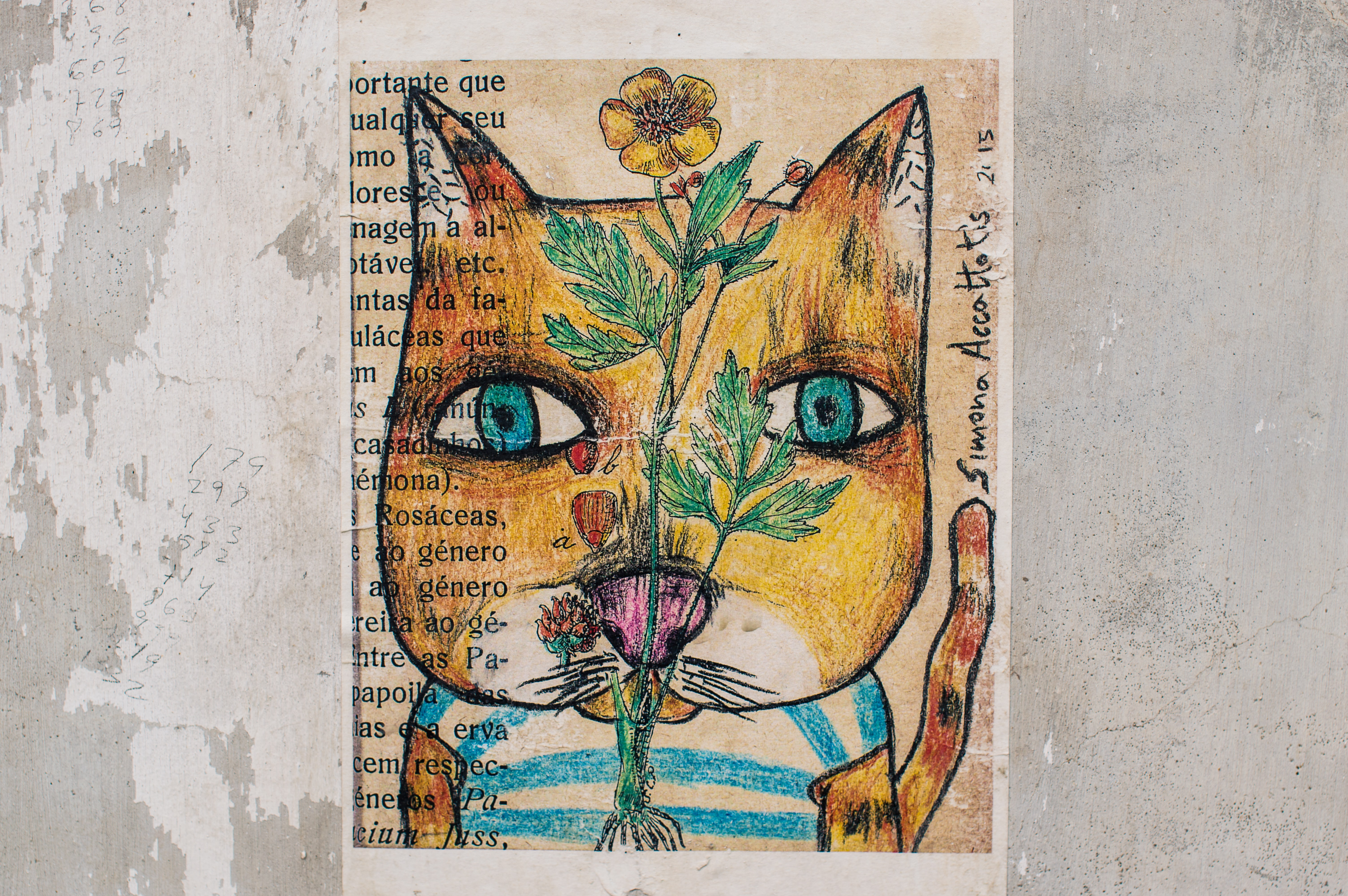 Abstract street art painting of cat with blue eyes and flower on textured gray wall