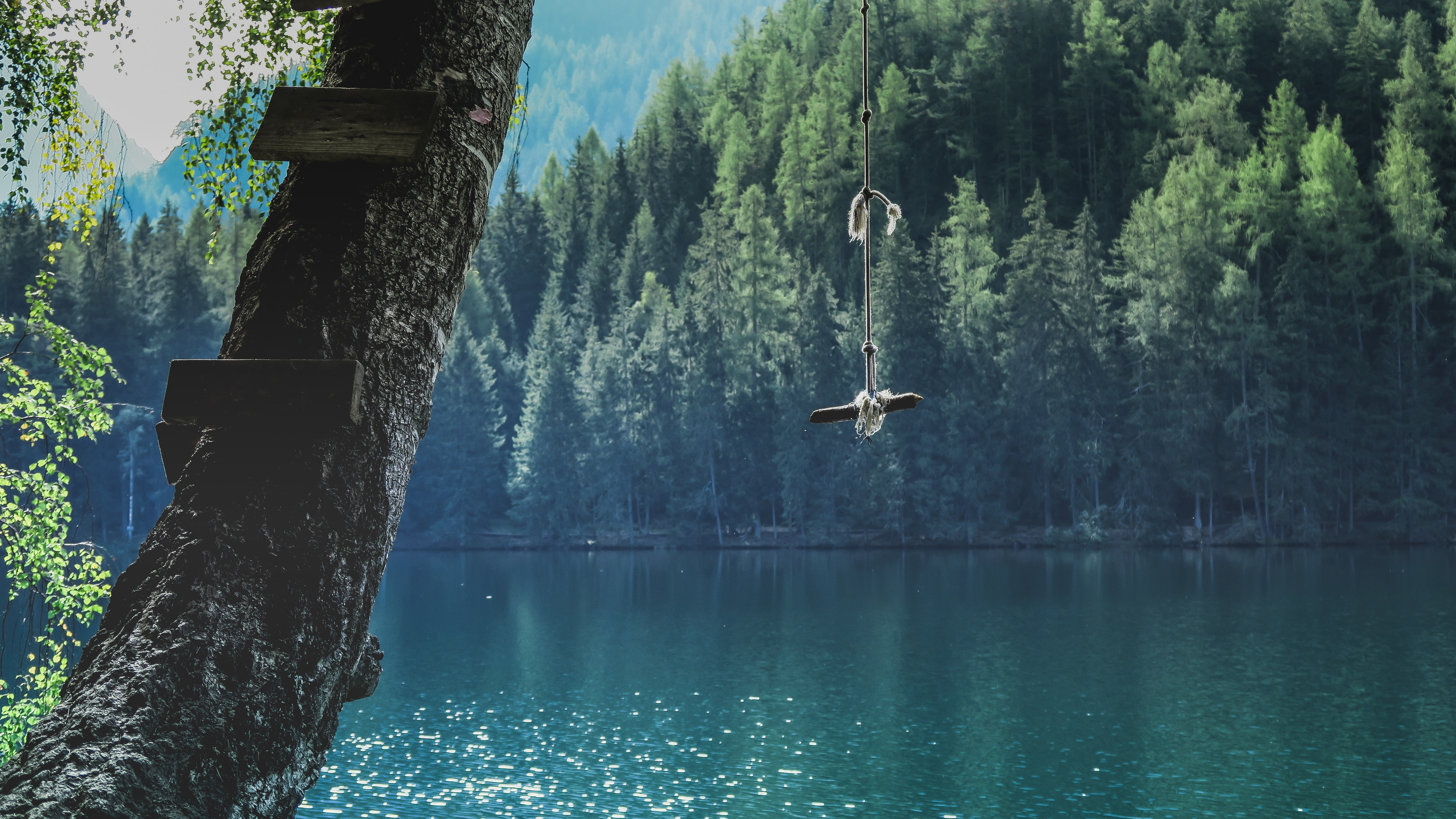 A stick on a rope hanging from a tree over Lake Piburger See