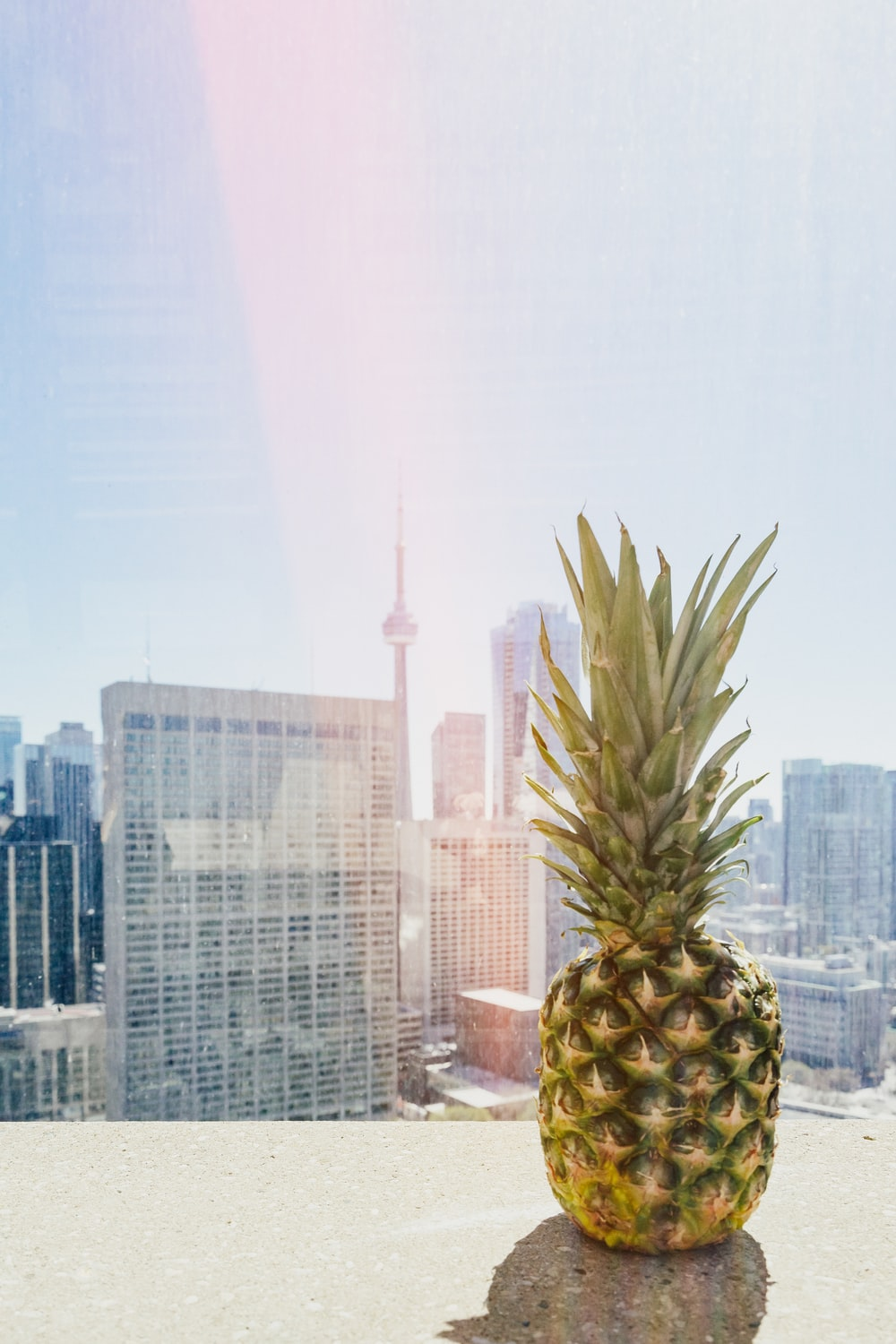 pineapple on roof