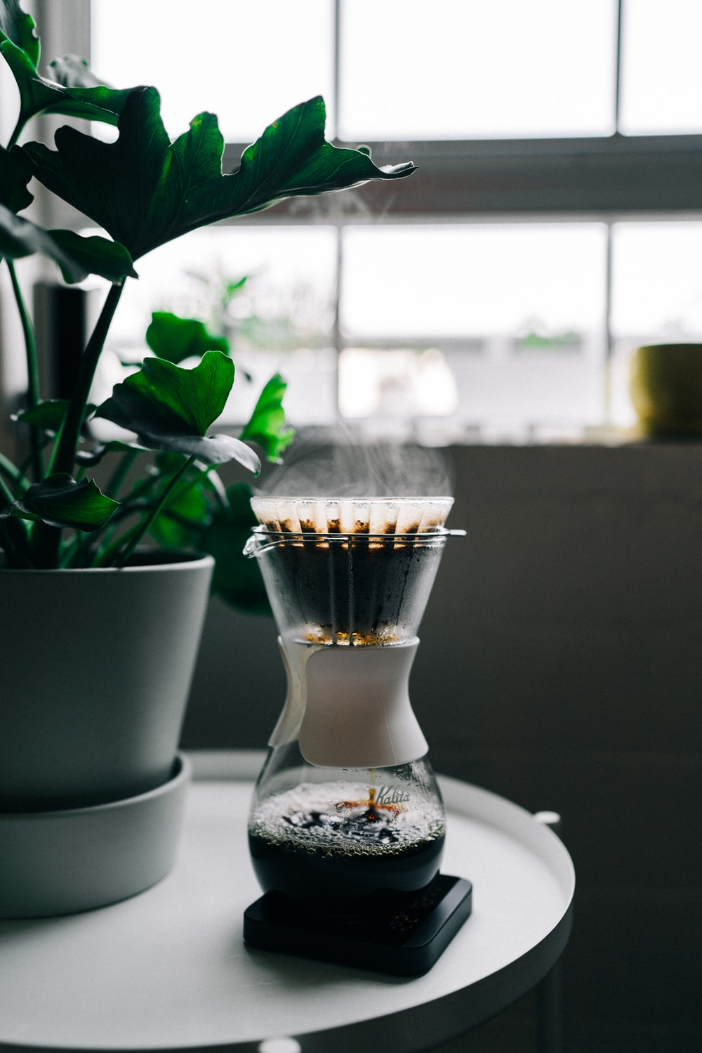 turned on black and grey coffeemaker near green leaf plant