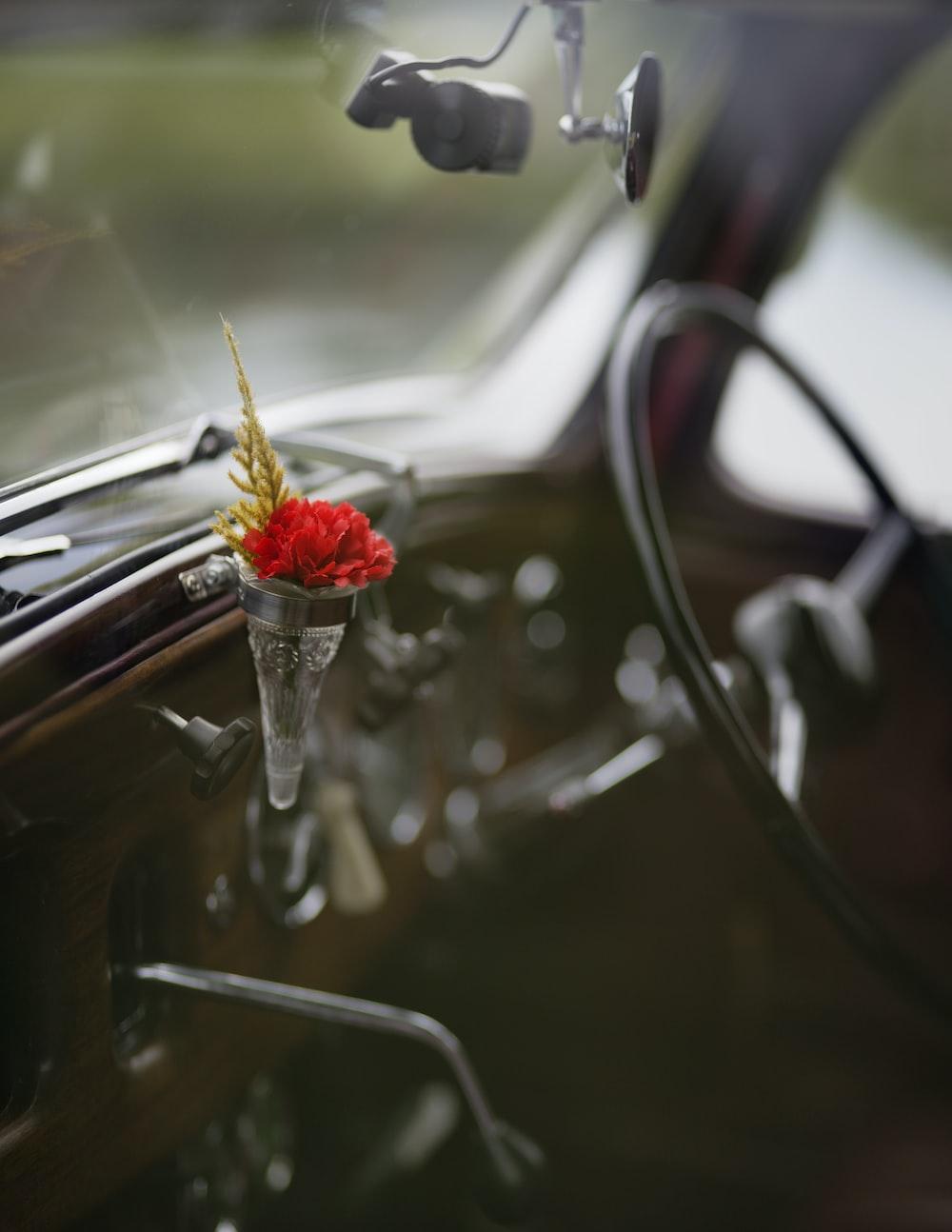 focus photo of flower inside vehicle