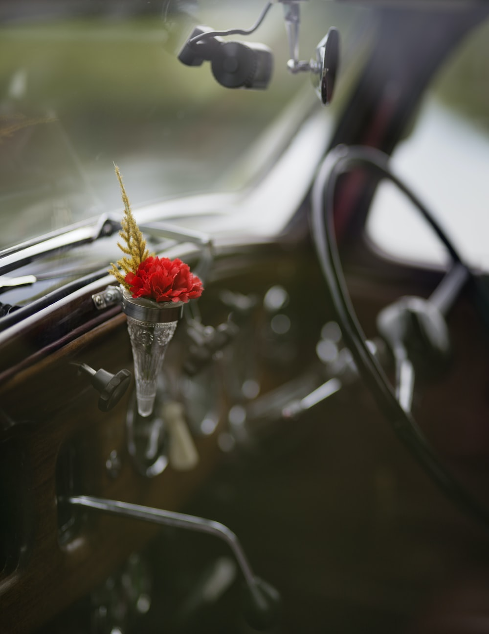 focus photo of flower inside vehicle