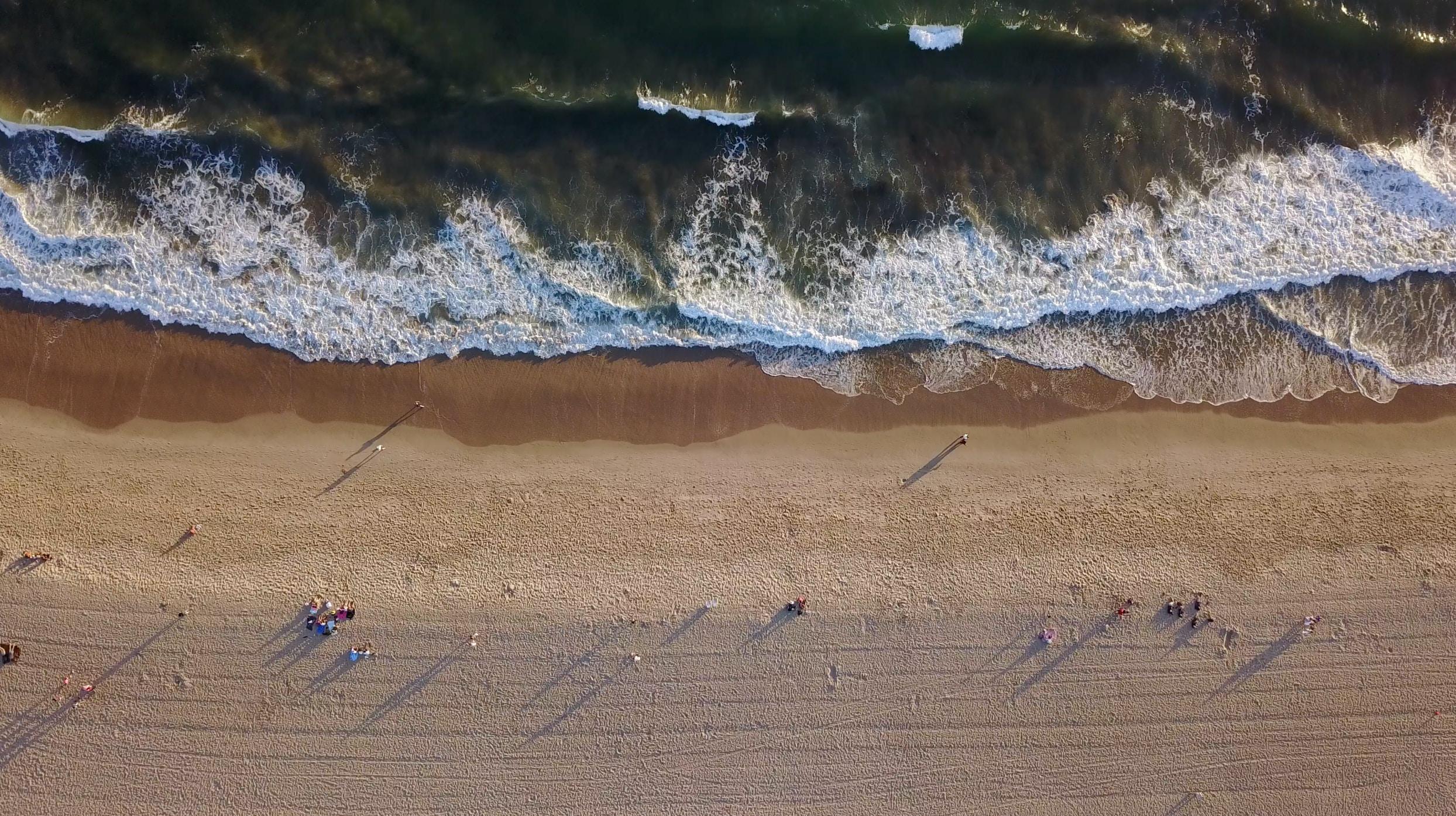 Drone view of people on the sandy Venice Beach coastline