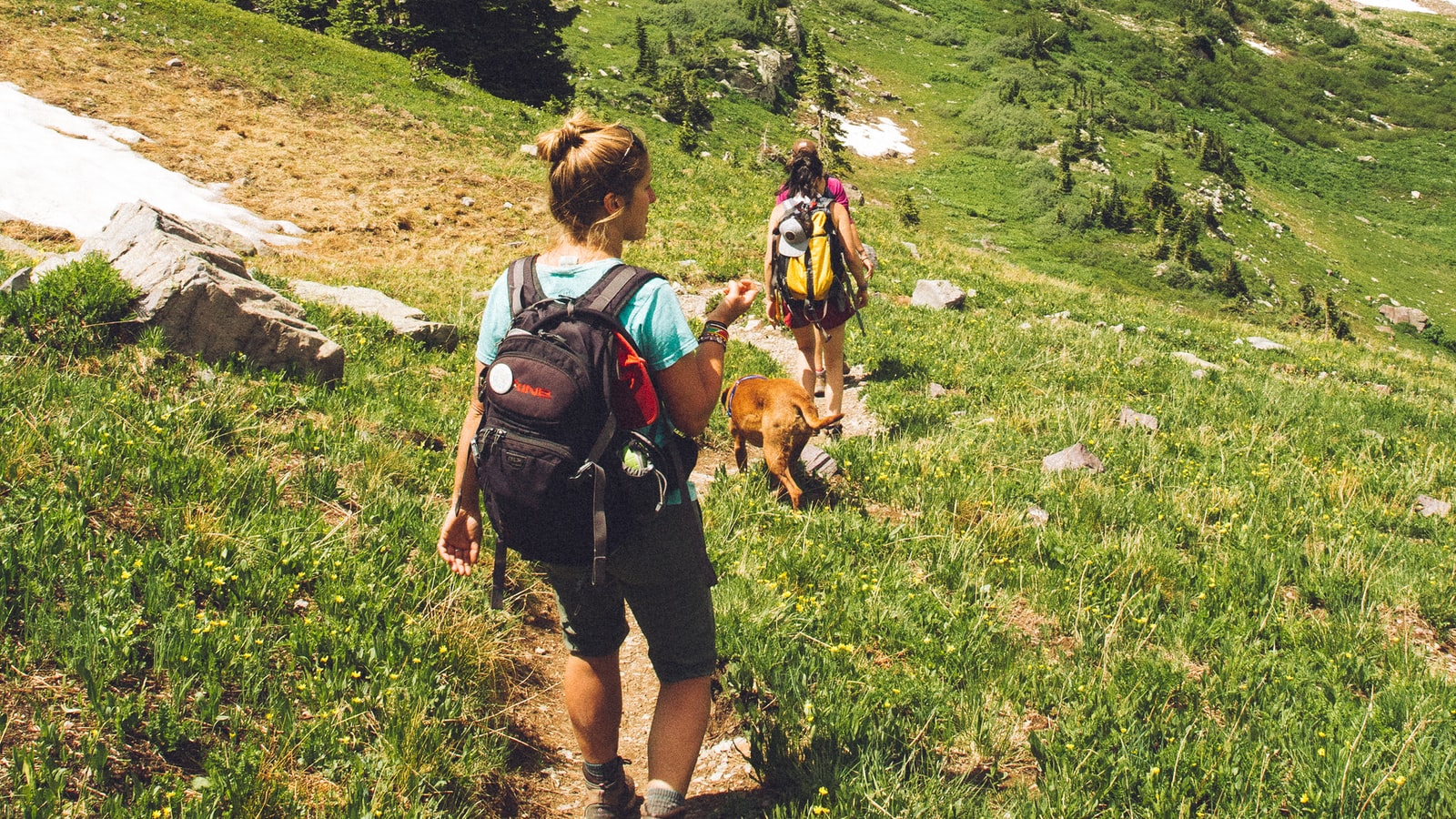 StudyDIY | 英國遊學 | 牛津遊學 | 熱門語言學校。代辦推薦 X 遊學費用預估