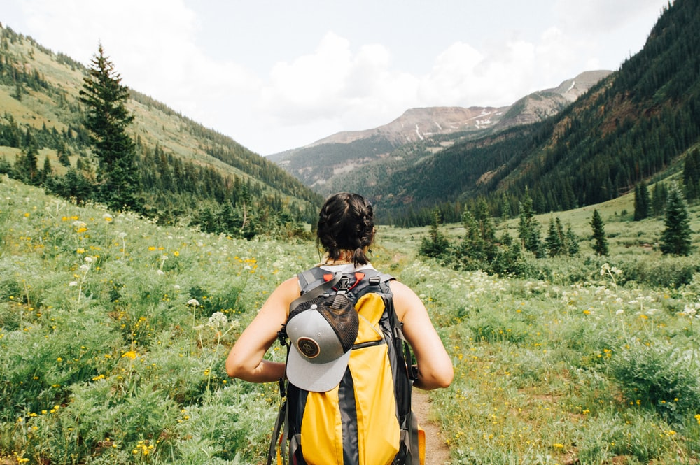 person carrying yellow and black backpack walking between green plants