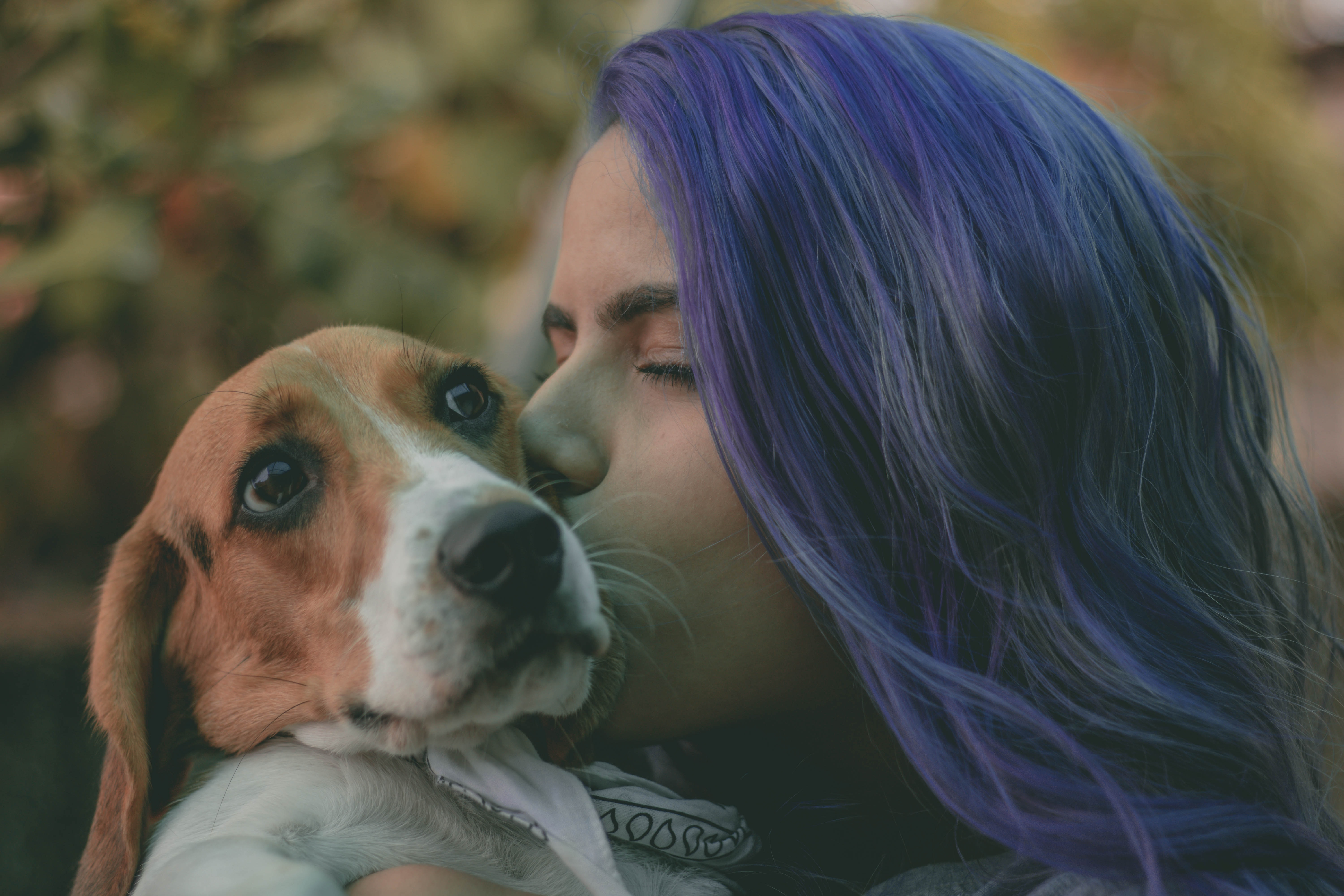 woman kissing brown and white dog