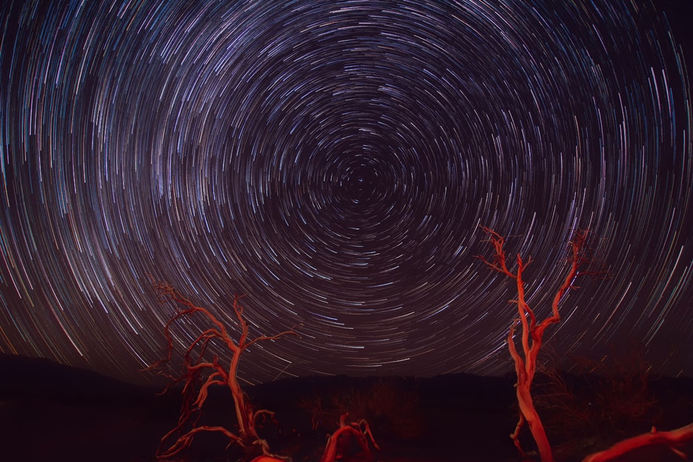 starry night digital wallpaper