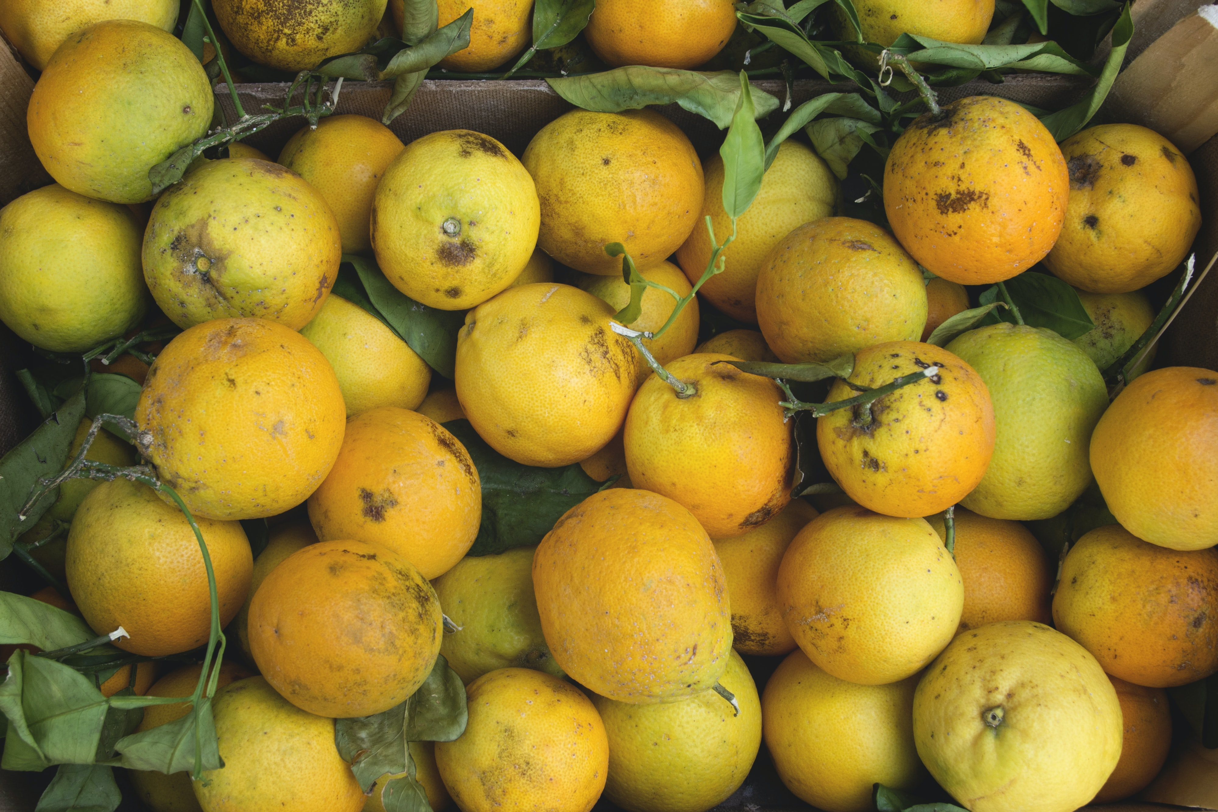 bunch of yellow fruits