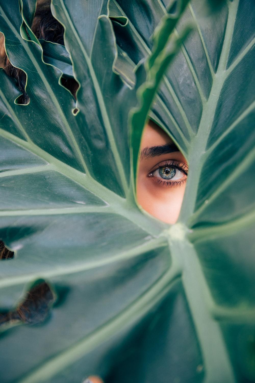 woman peeking over green leaf plant taken at daytime