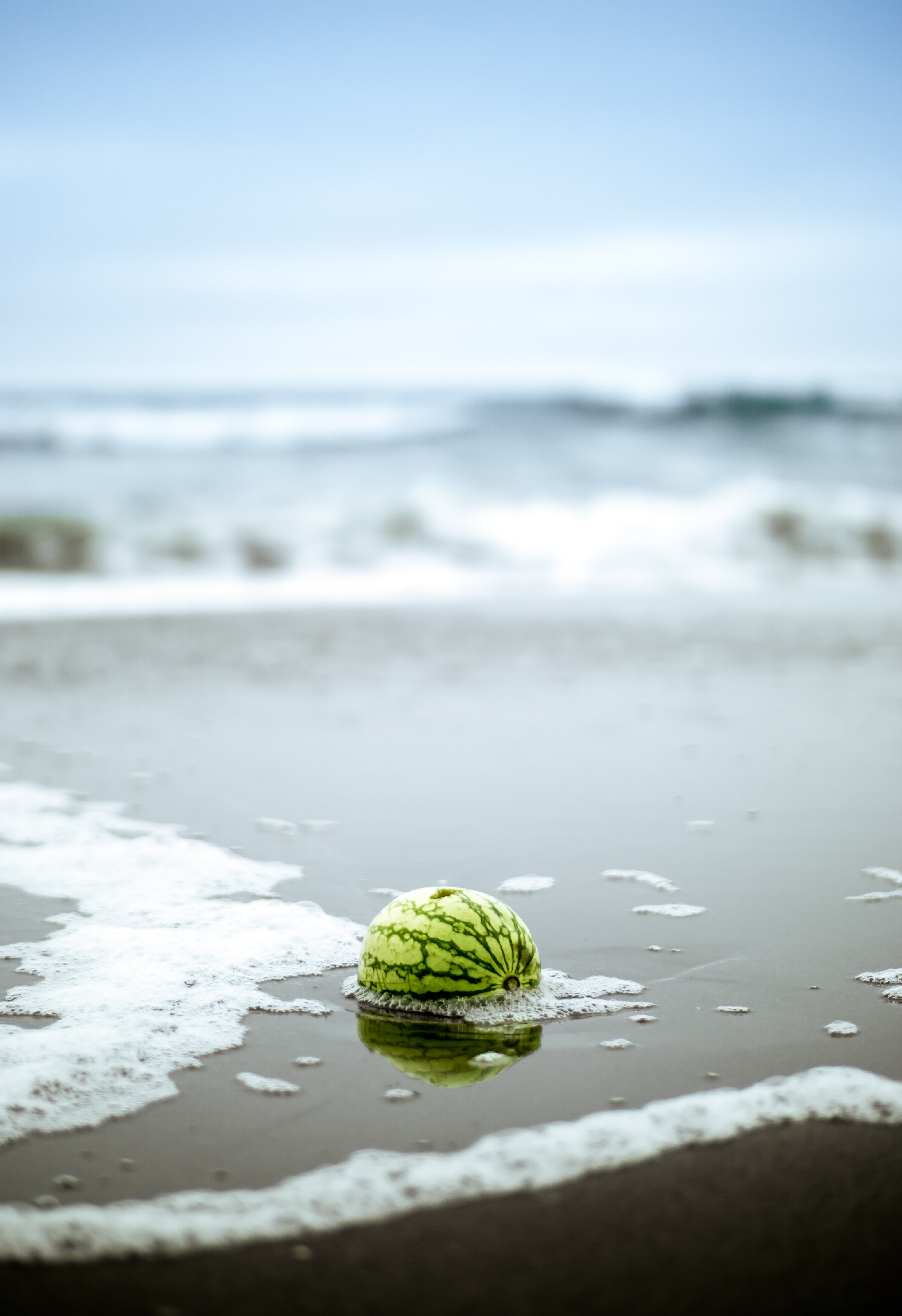 shallow focus photography of watermelon on body of water