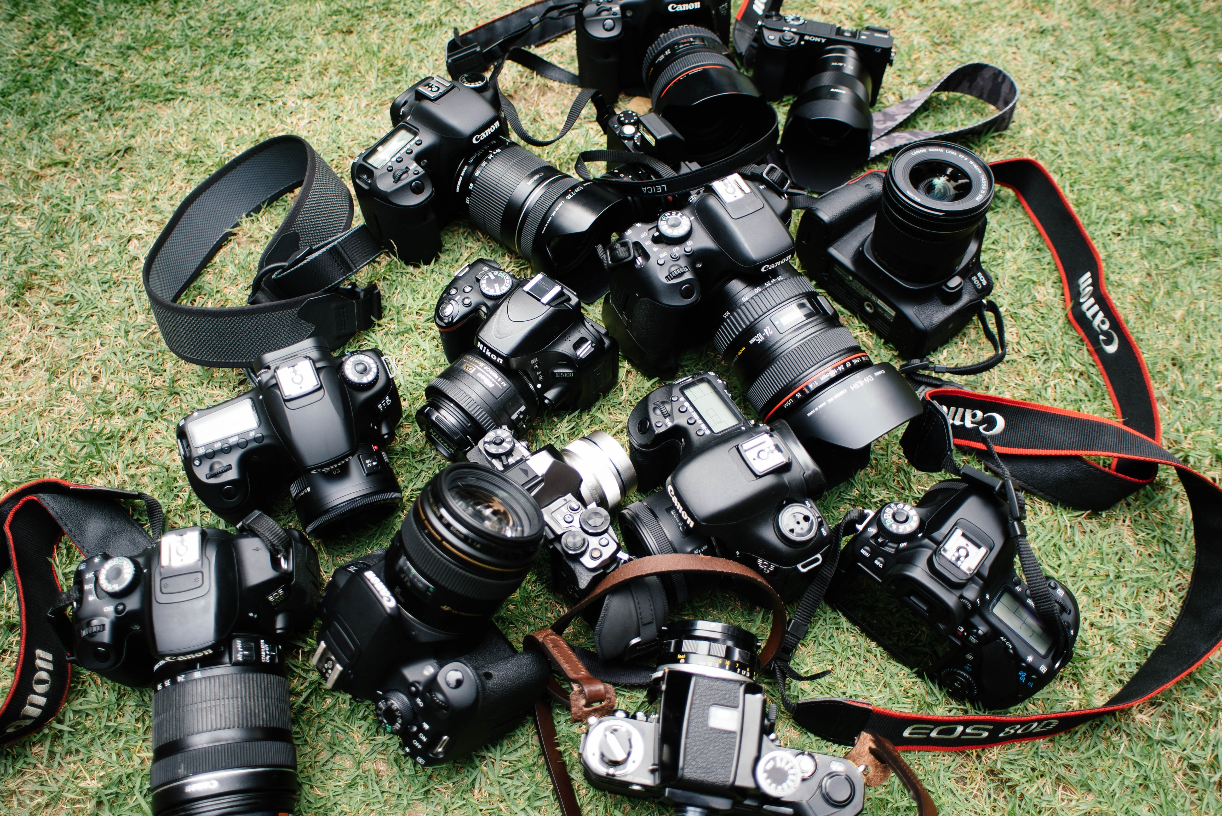 Various Canon DSLR cameras with straps scattered on a grassy floor