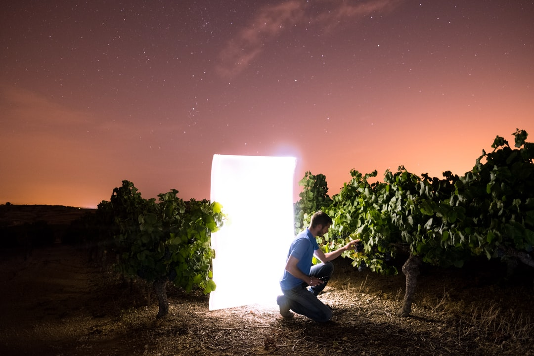 First attempt doing light painting in a wineyard under a sky full of star. It was a pleasure producing this series!
