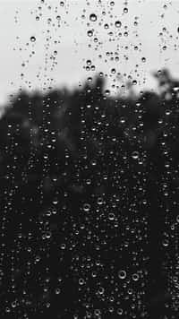 _°Salty Rain   rain stories
