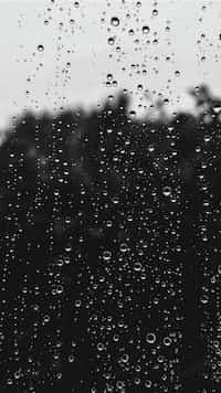 Raindrops raindrops stories
