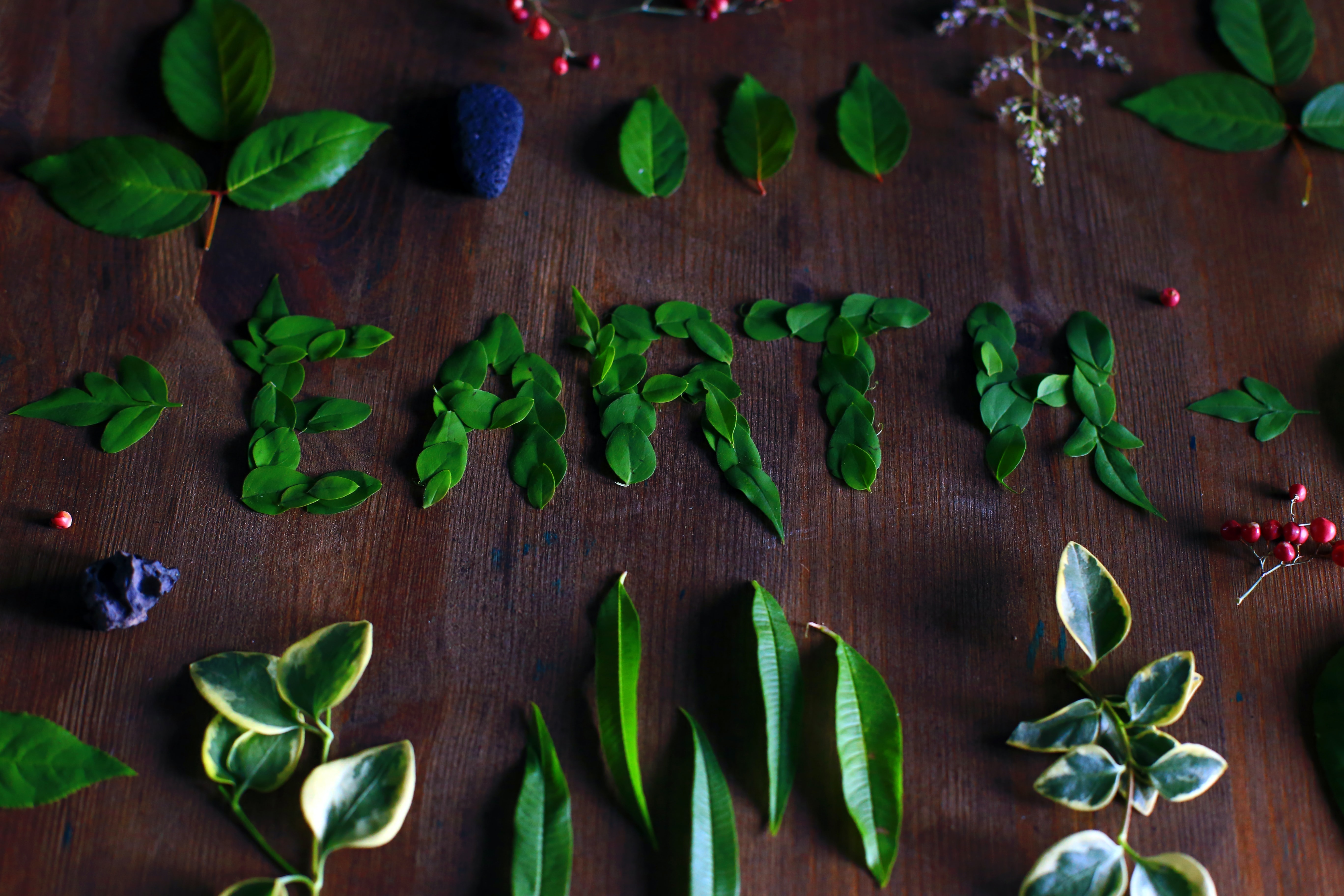 Plants And Leafs Arranged To Make Earth Text Artwork On Table In Barcelona