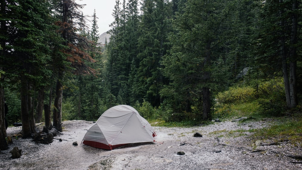 gray tent beside lake surrounded by trees