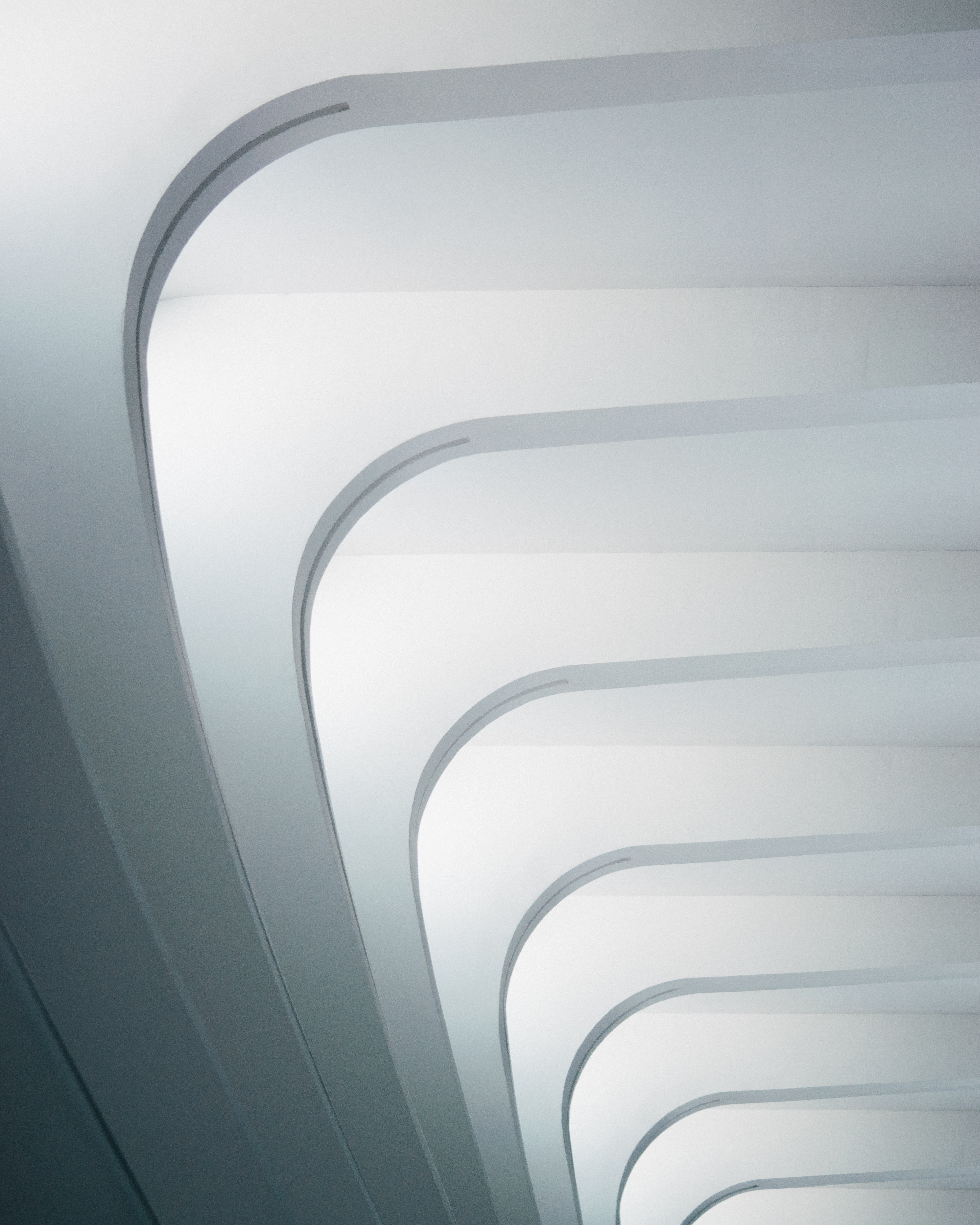 Round corners in the white ribs of the ceiling of Milwaukee Art Museum