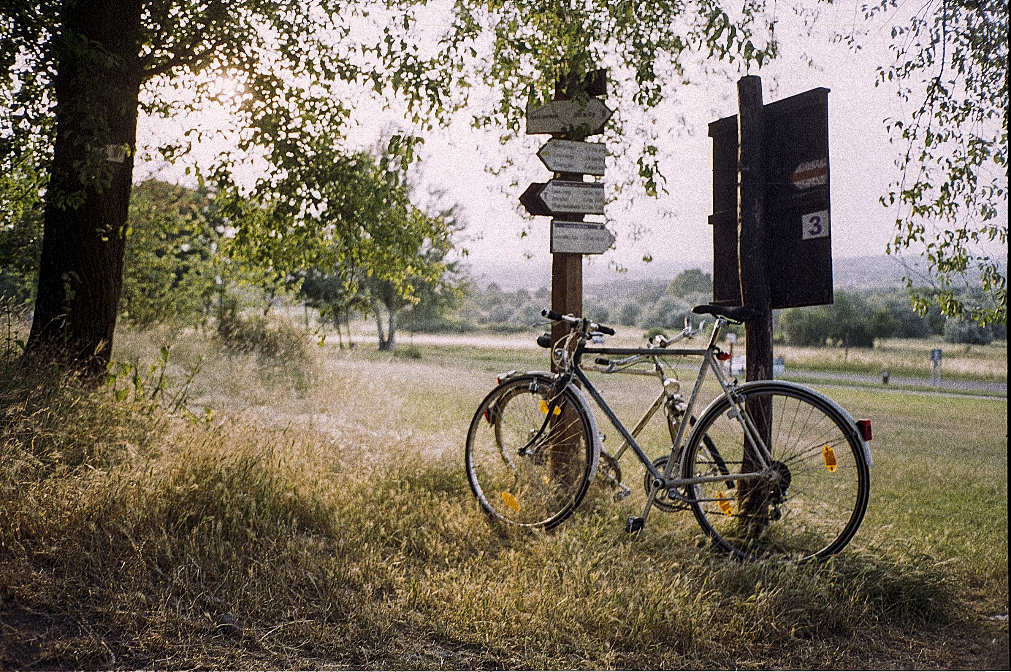 Bicycle rests against two signs with directions at the edge of the trees