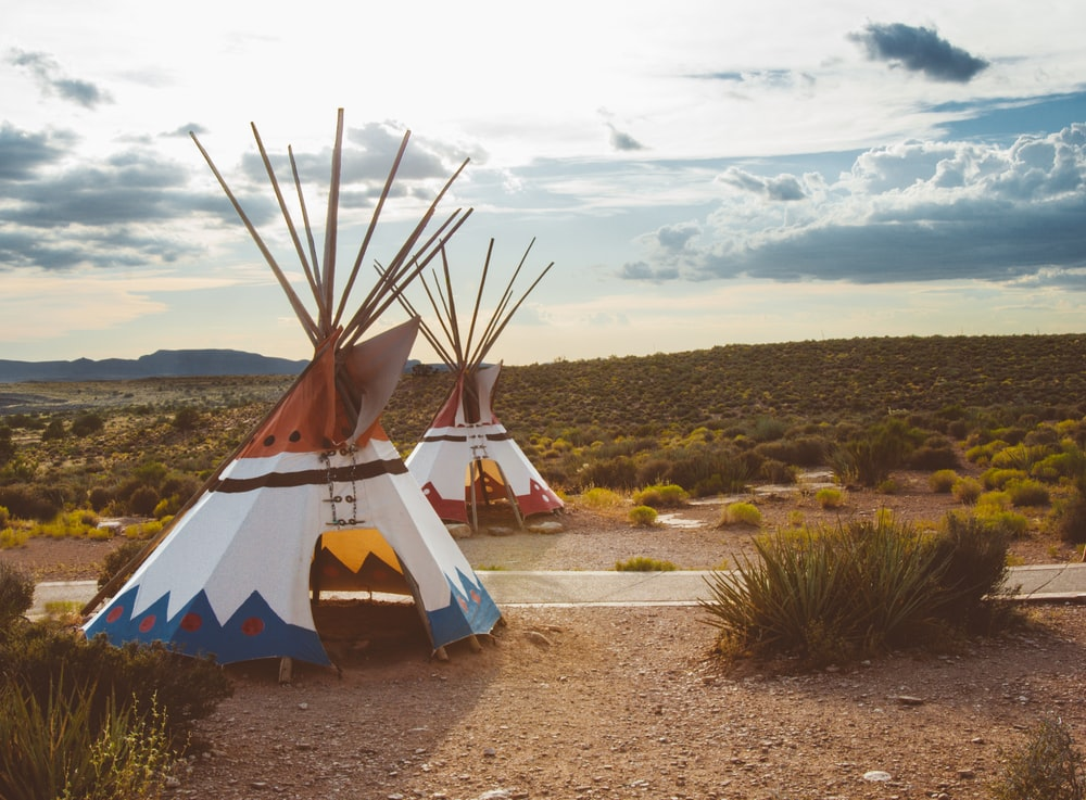 two white-blue-and-red teepee tents surrounded by green plants