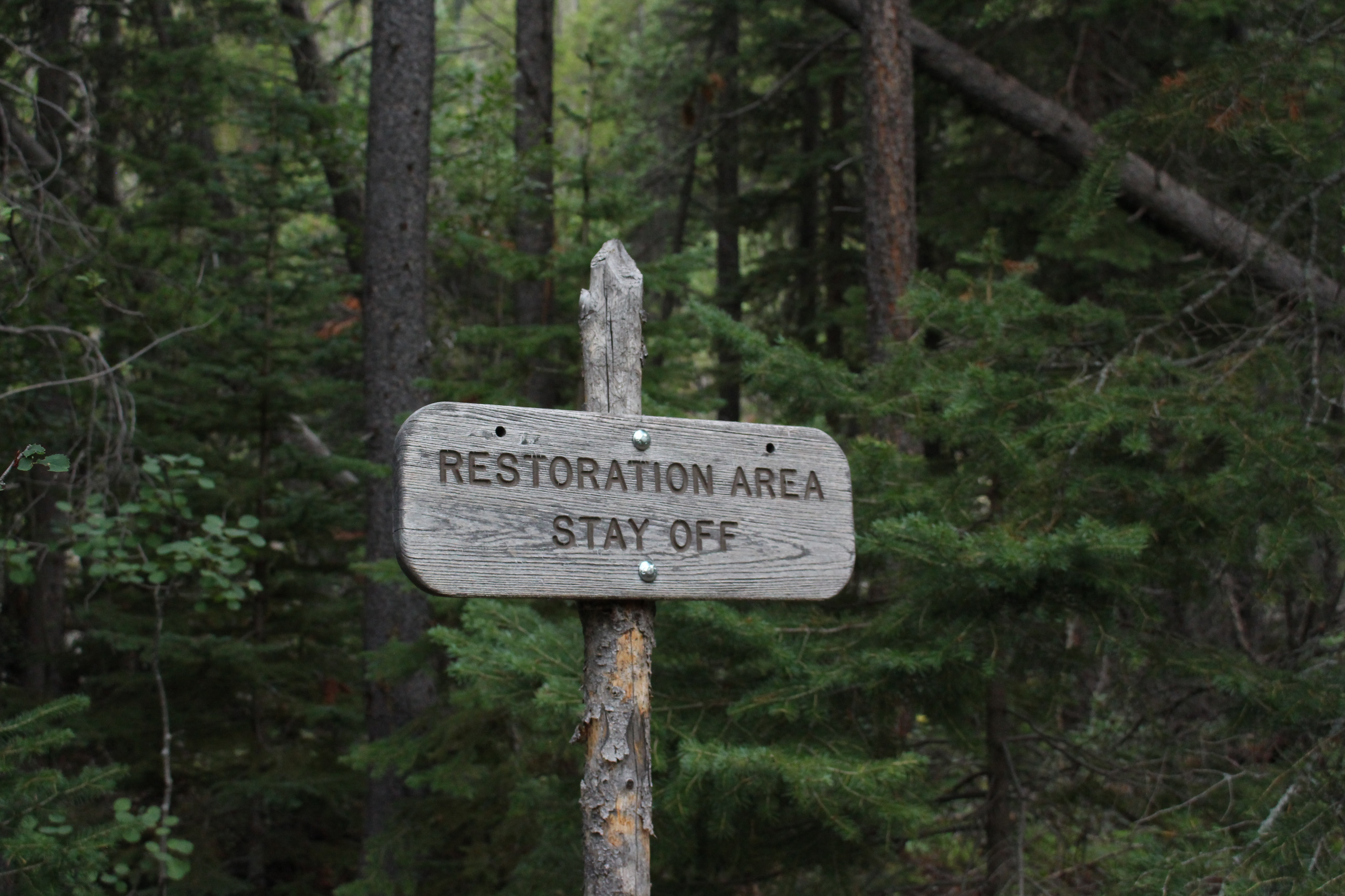 Rustic warning sign tells hikers to stay out of a wooded area