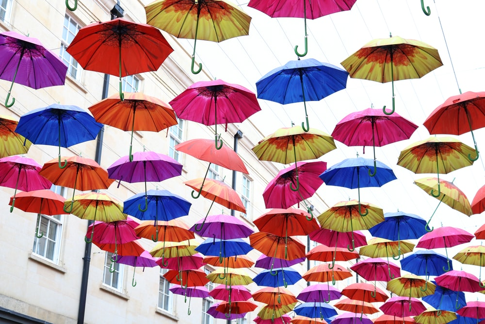 umbrella festival at daytime