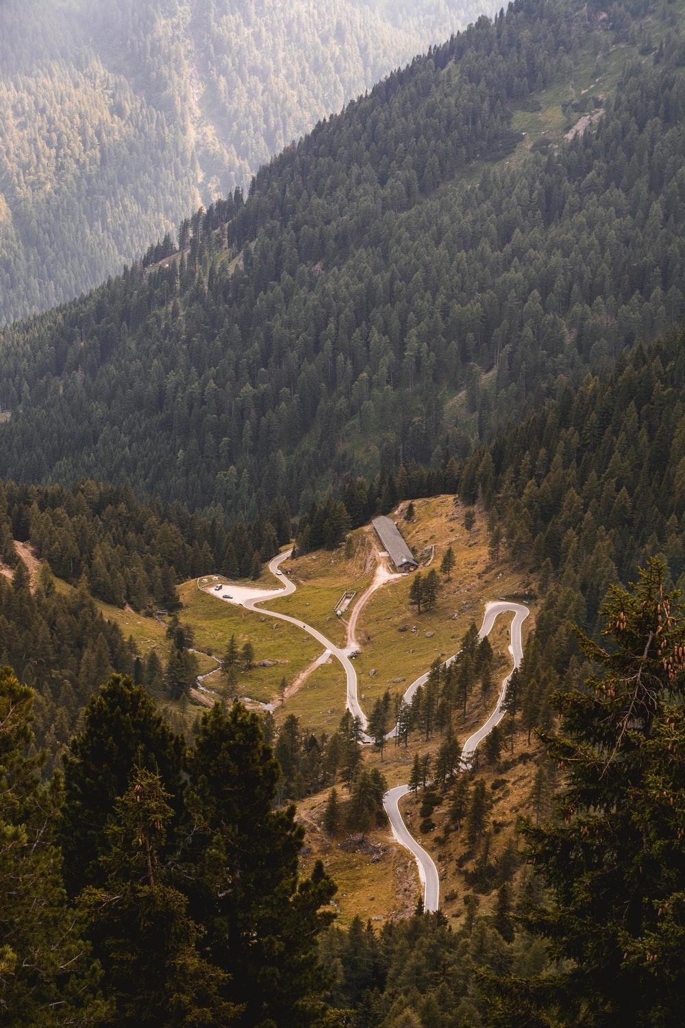 A zigzagging road surrounded by evergreen woods on a hillside in Manghen Pass