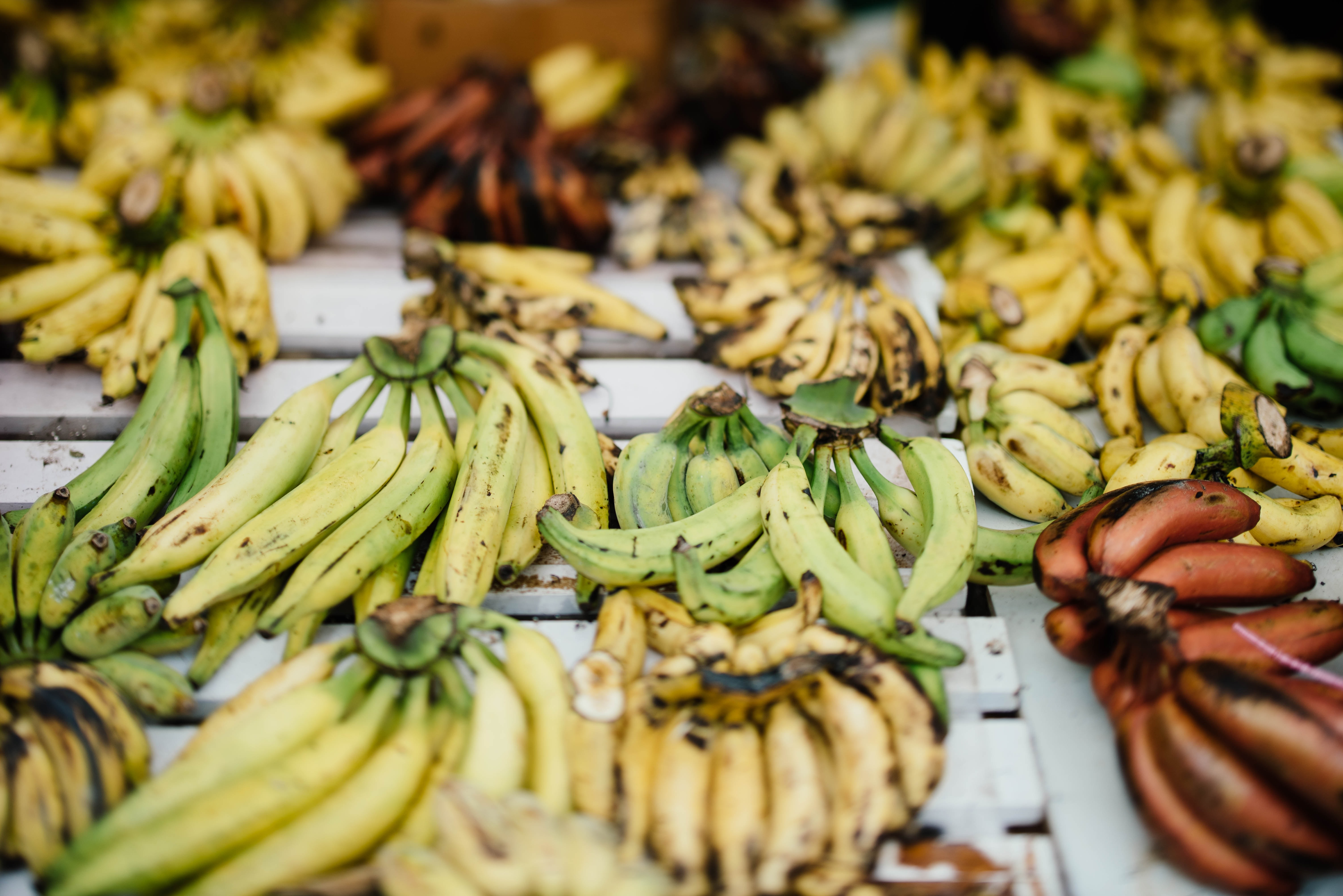 Bunches of bananas of varying ripeness for sale