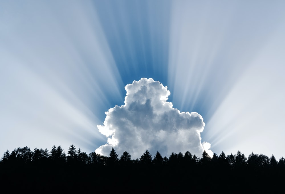 photography of clouds and forest trees