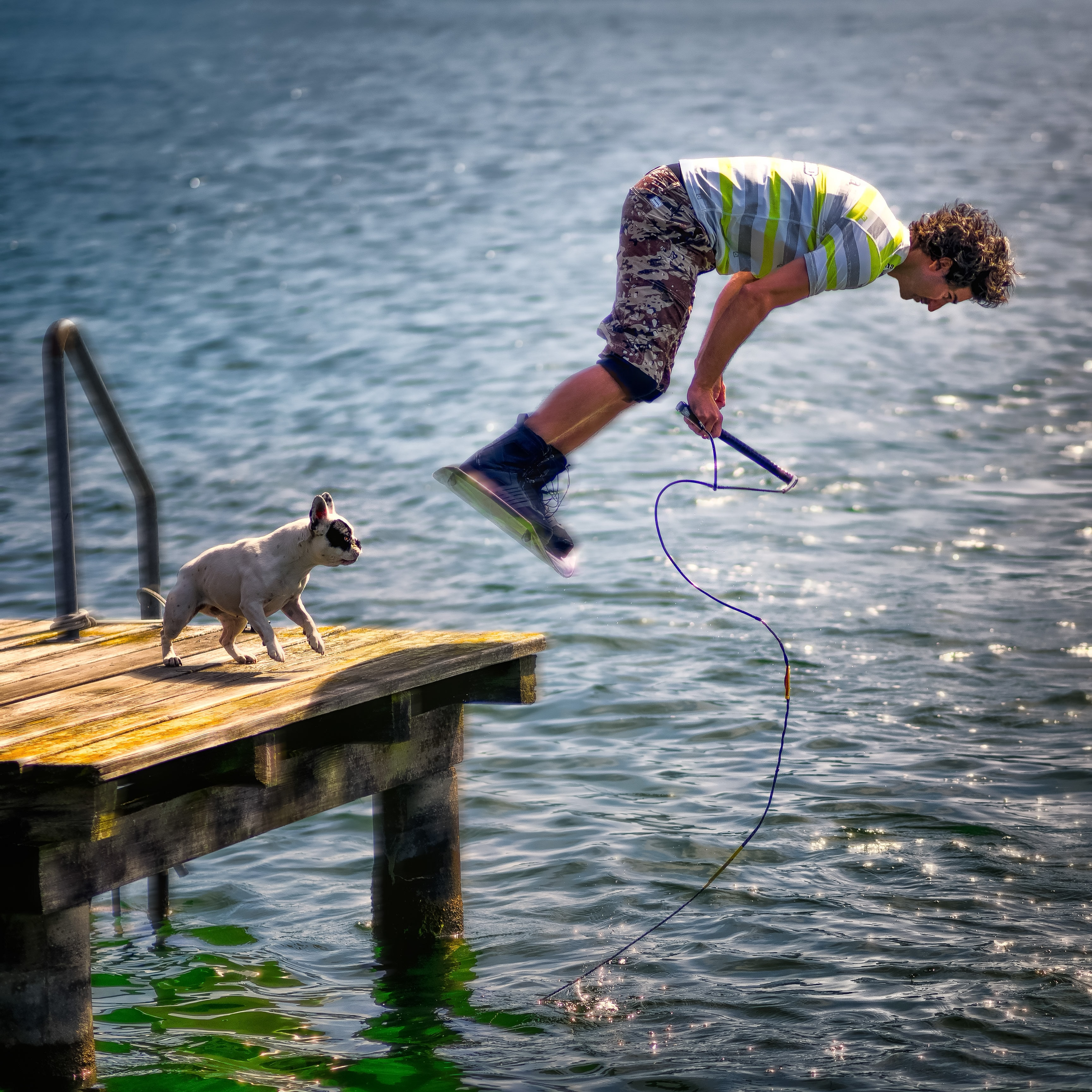 A man with curly hair diving into water, with his puppy on deck.