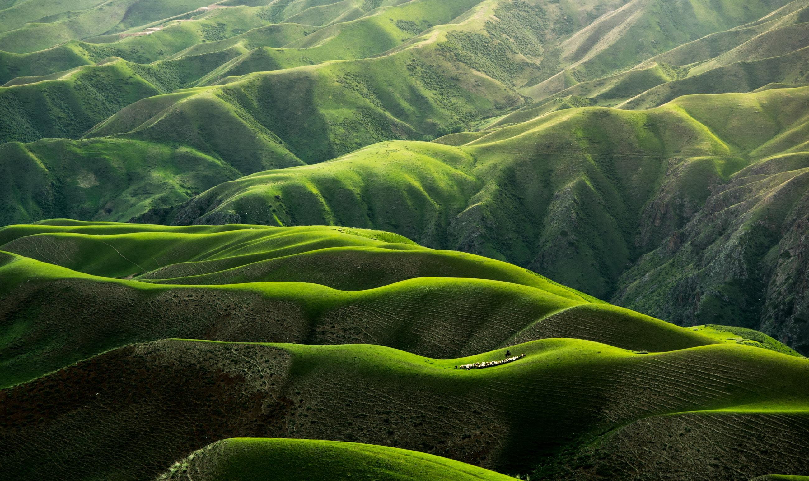 Birds Eye View Photograph Of Green Mountains