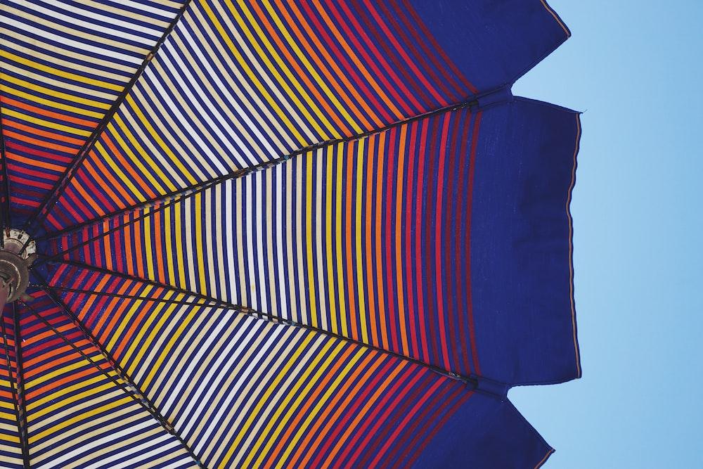 blue and multicolored umbrella