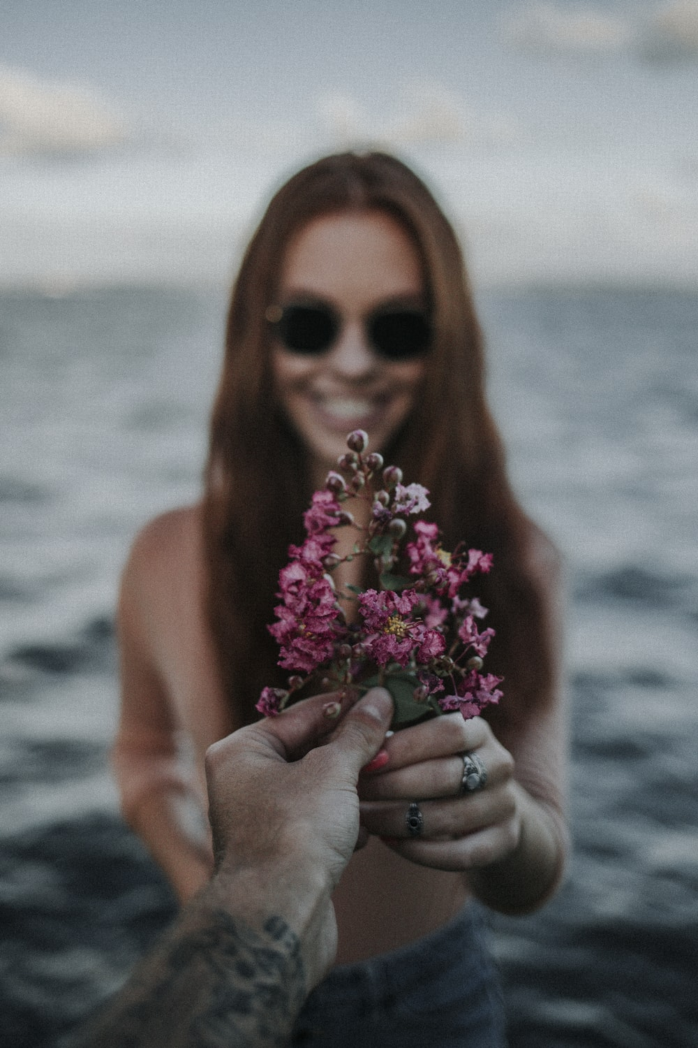 two hands holding pink petaled flowers